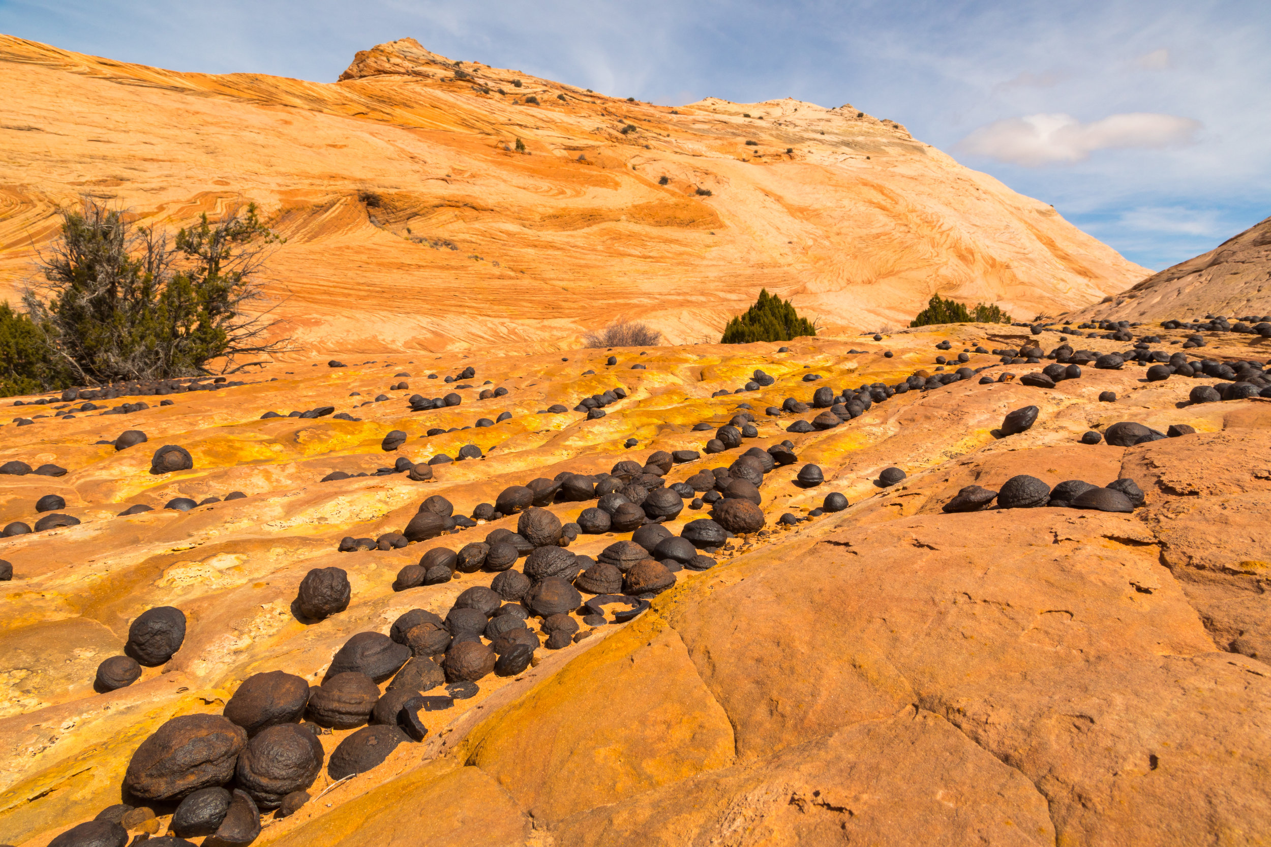 Escalante National Monument, Image # 5991
