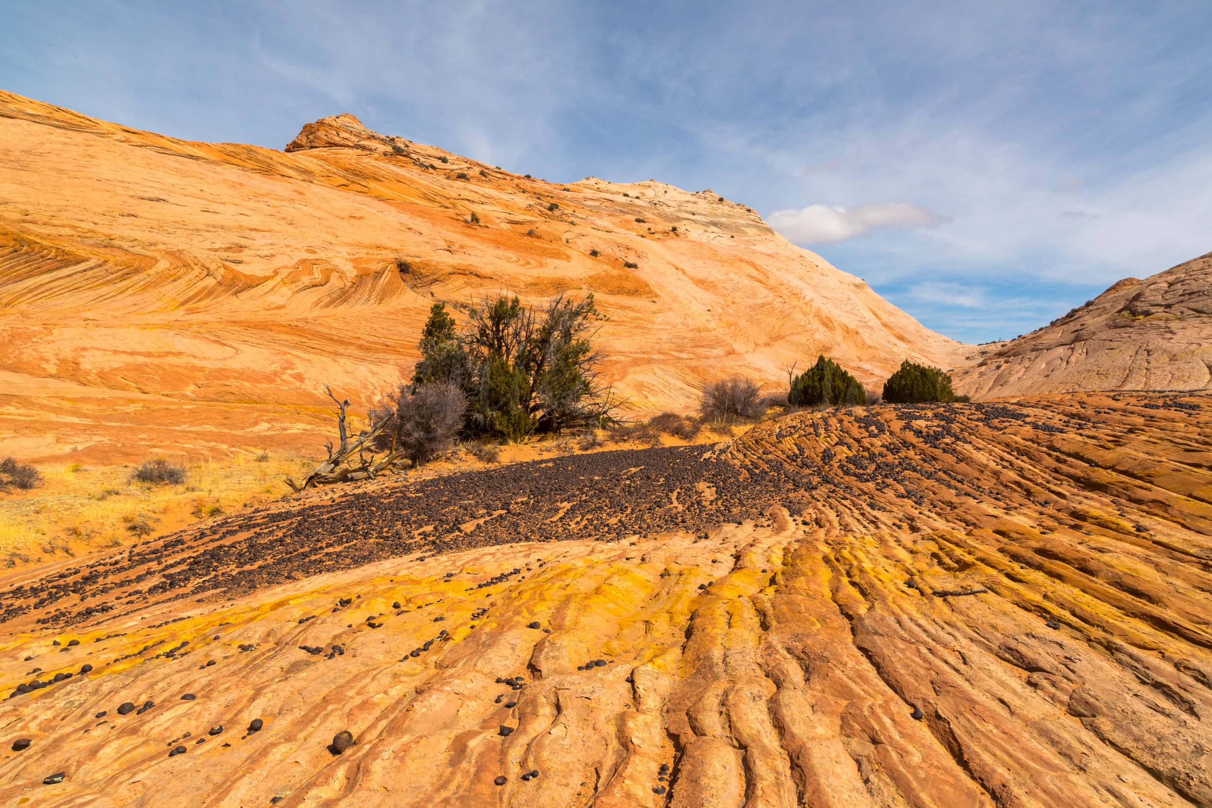 Escalante National Monument, Image # 5993