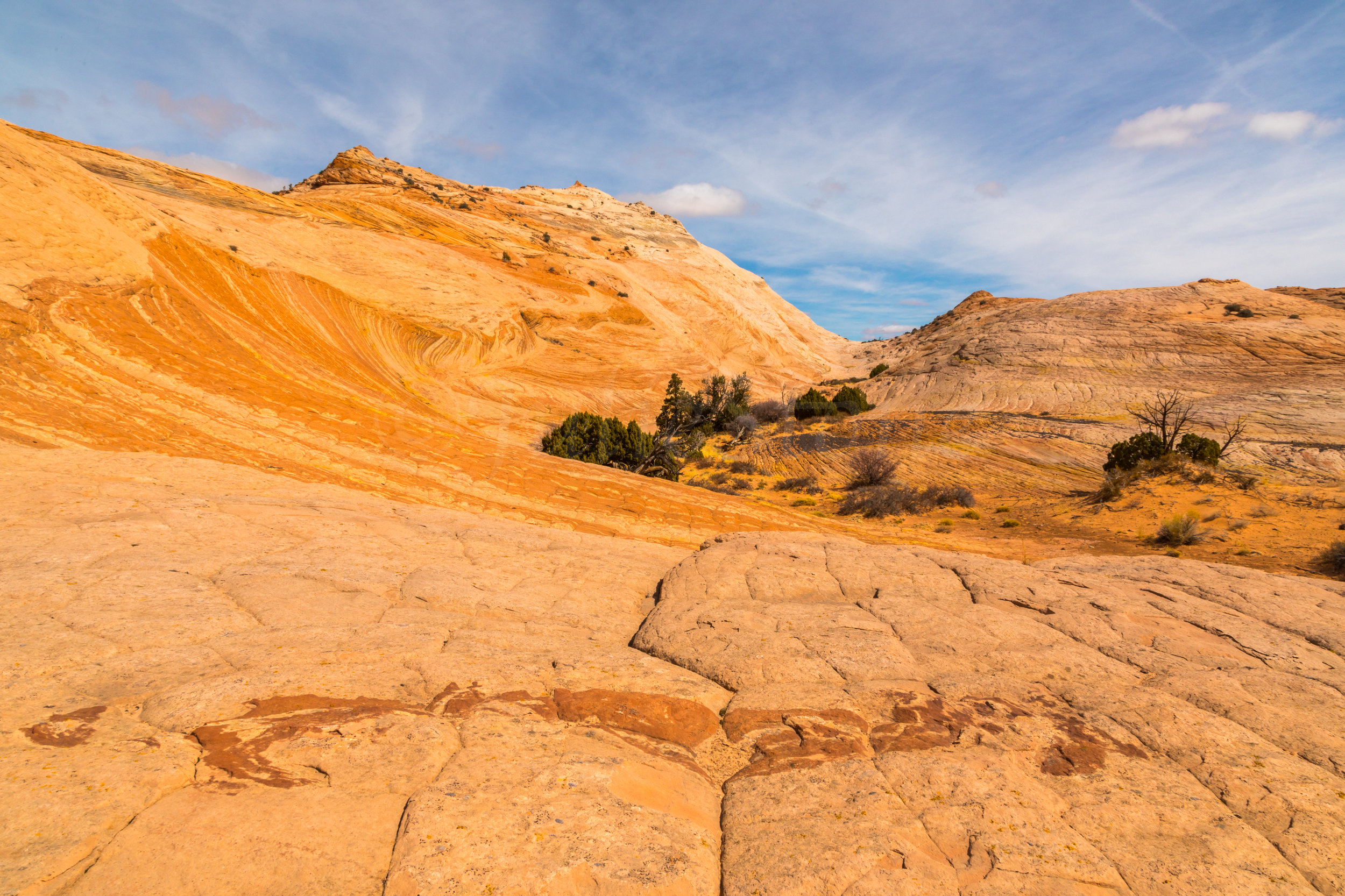 Escalante National Monument, Image # 6008