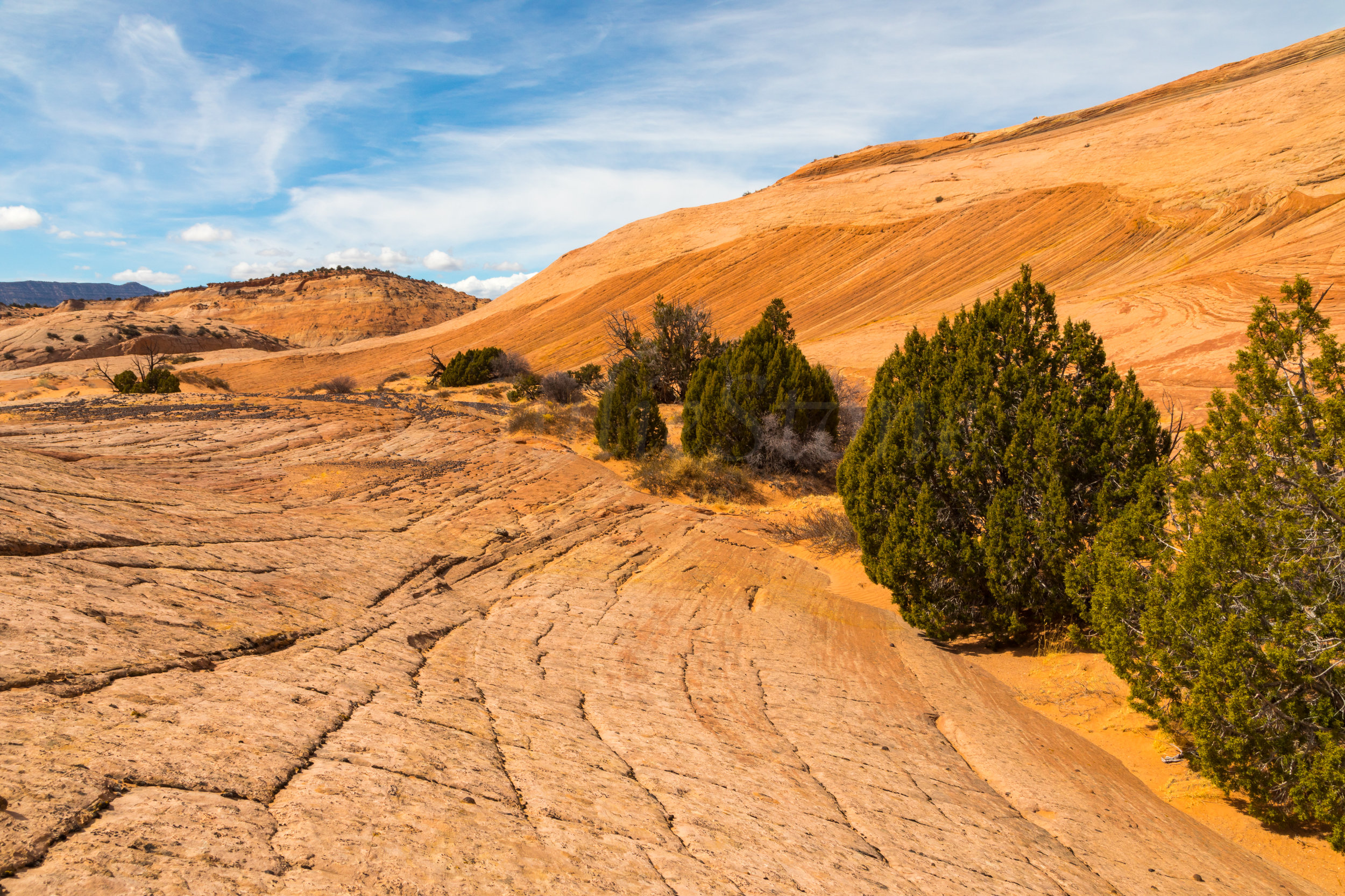 Escalante National Monument, Image # 6043