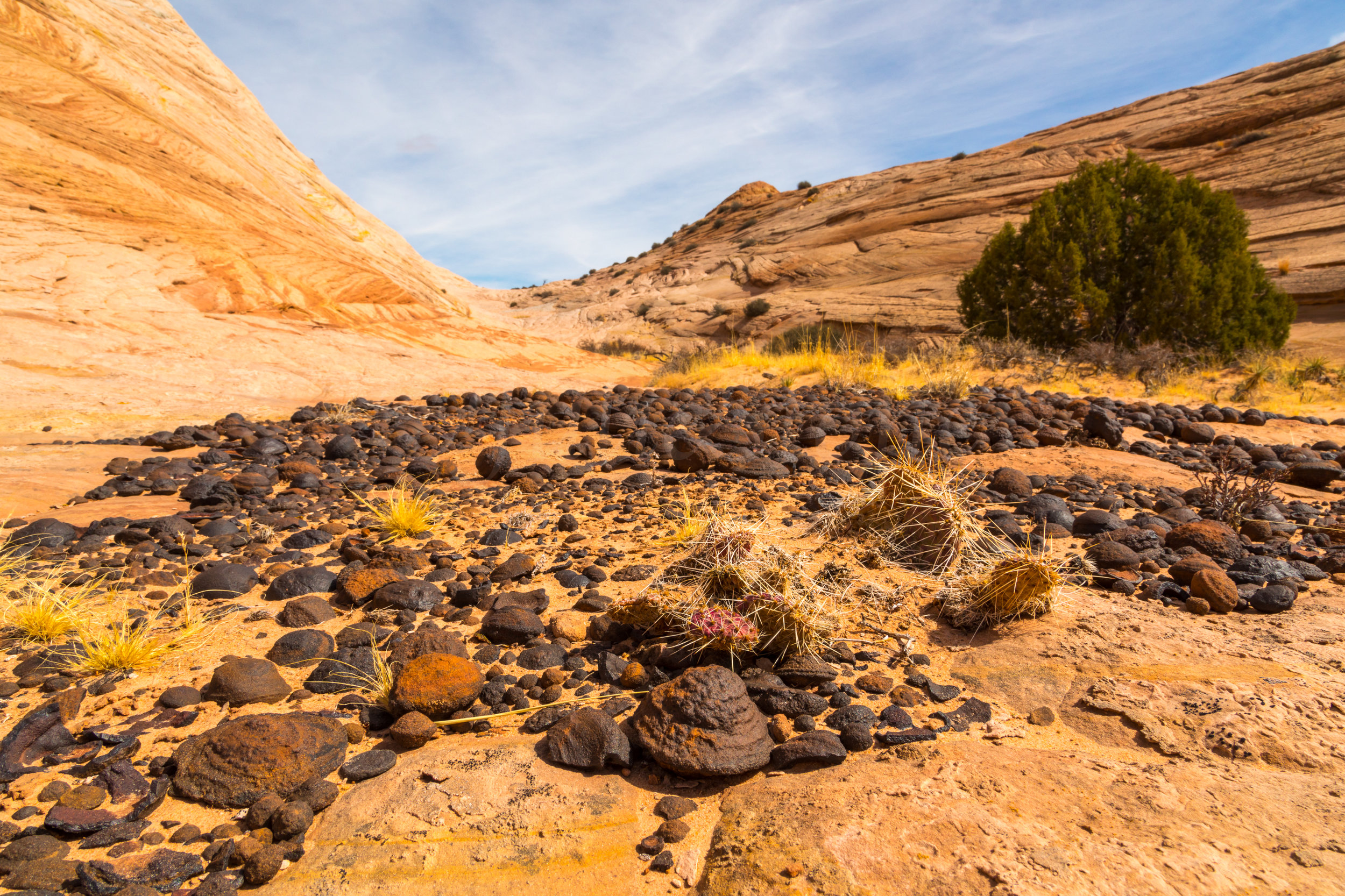 Escalante National Monument, Image # 6065