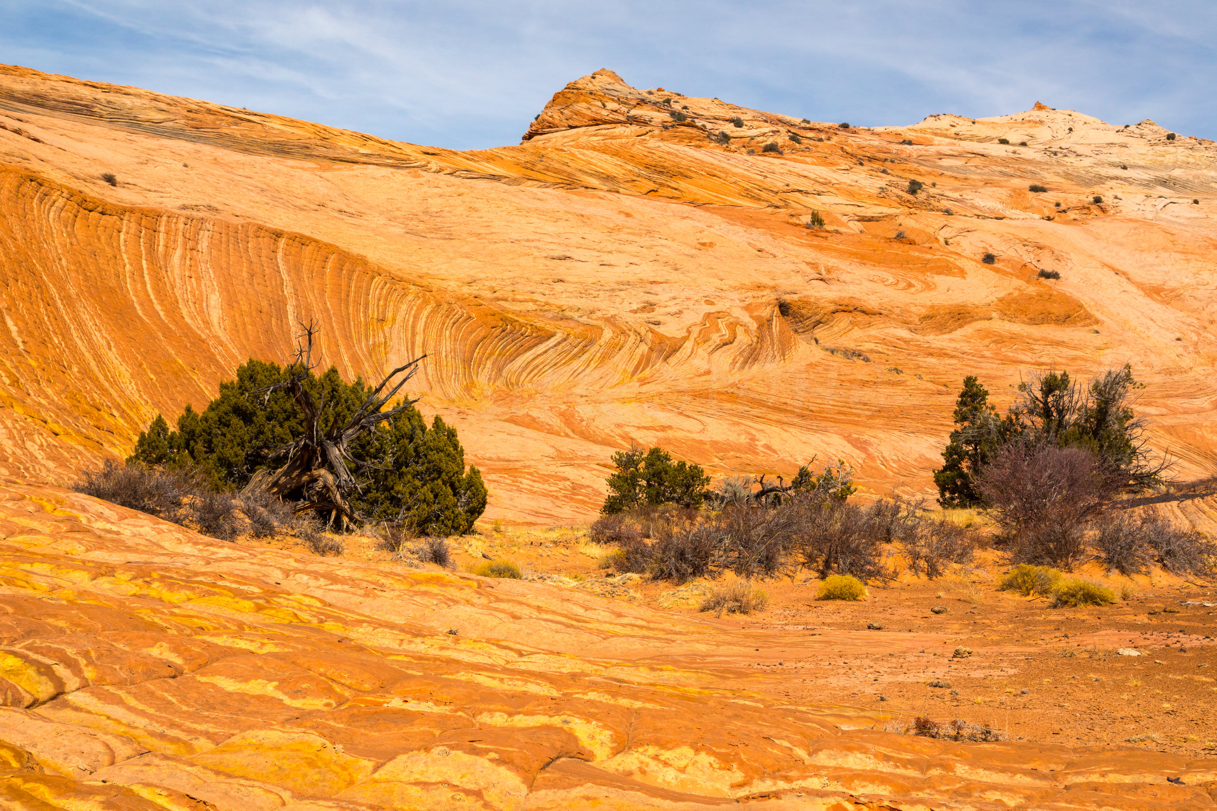 Escalante National Monument, Image # 6298