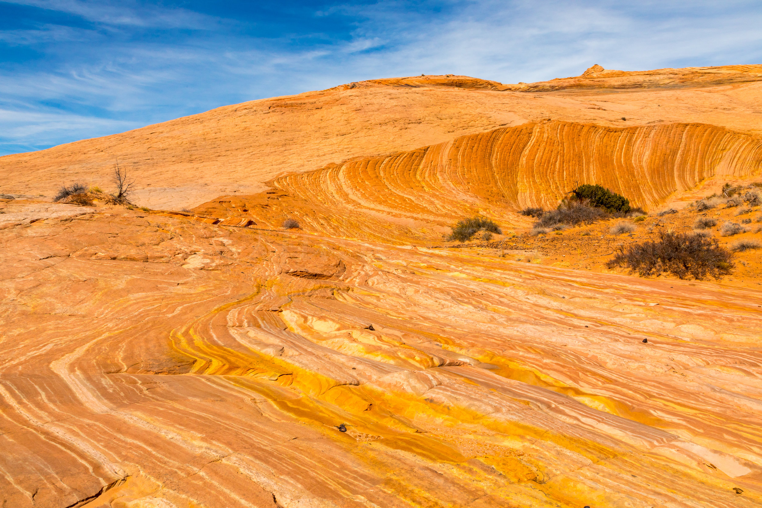 Escalante National Monument, Image # 6319