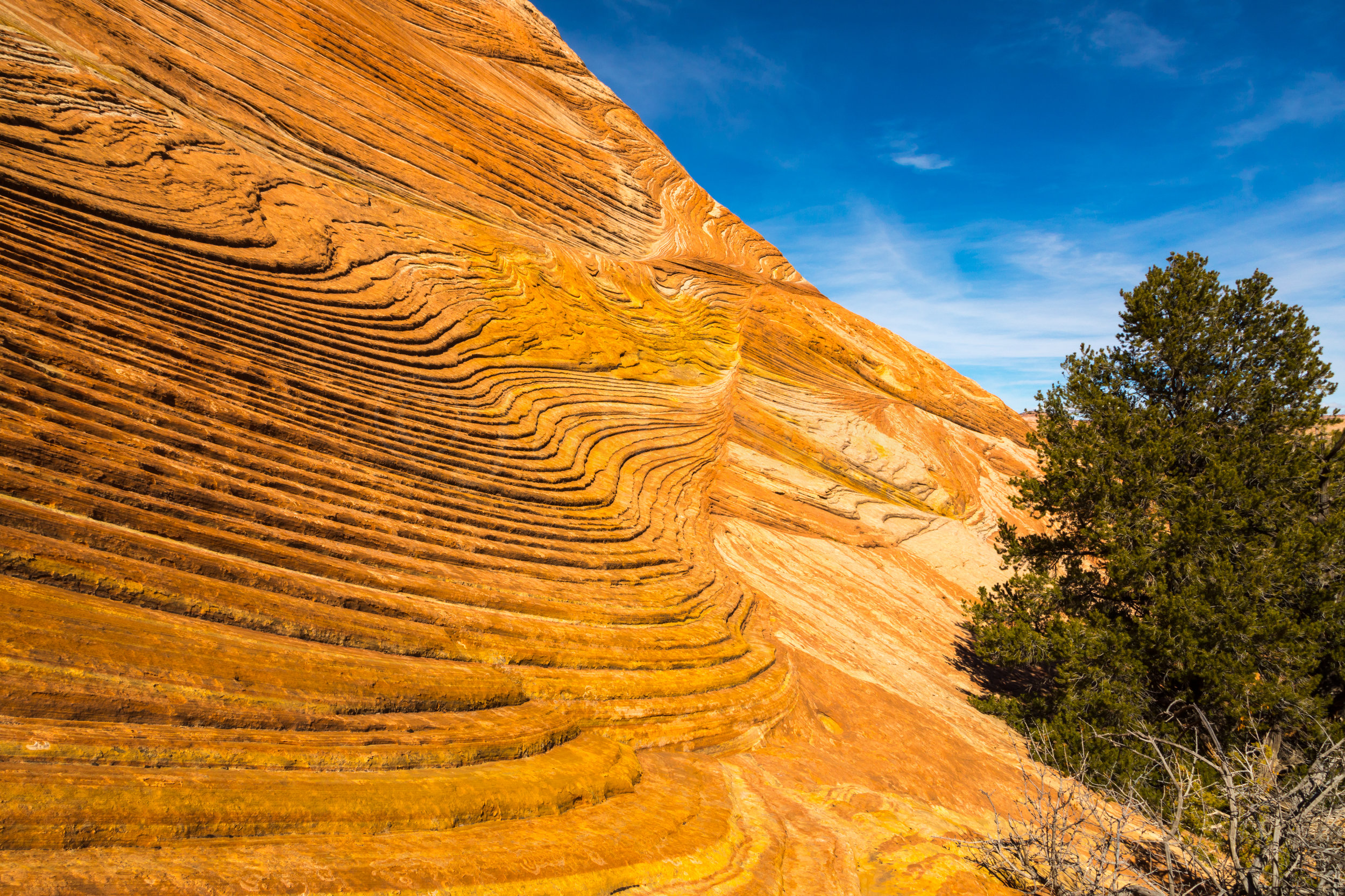 Escalante National Monument, Image # 6562