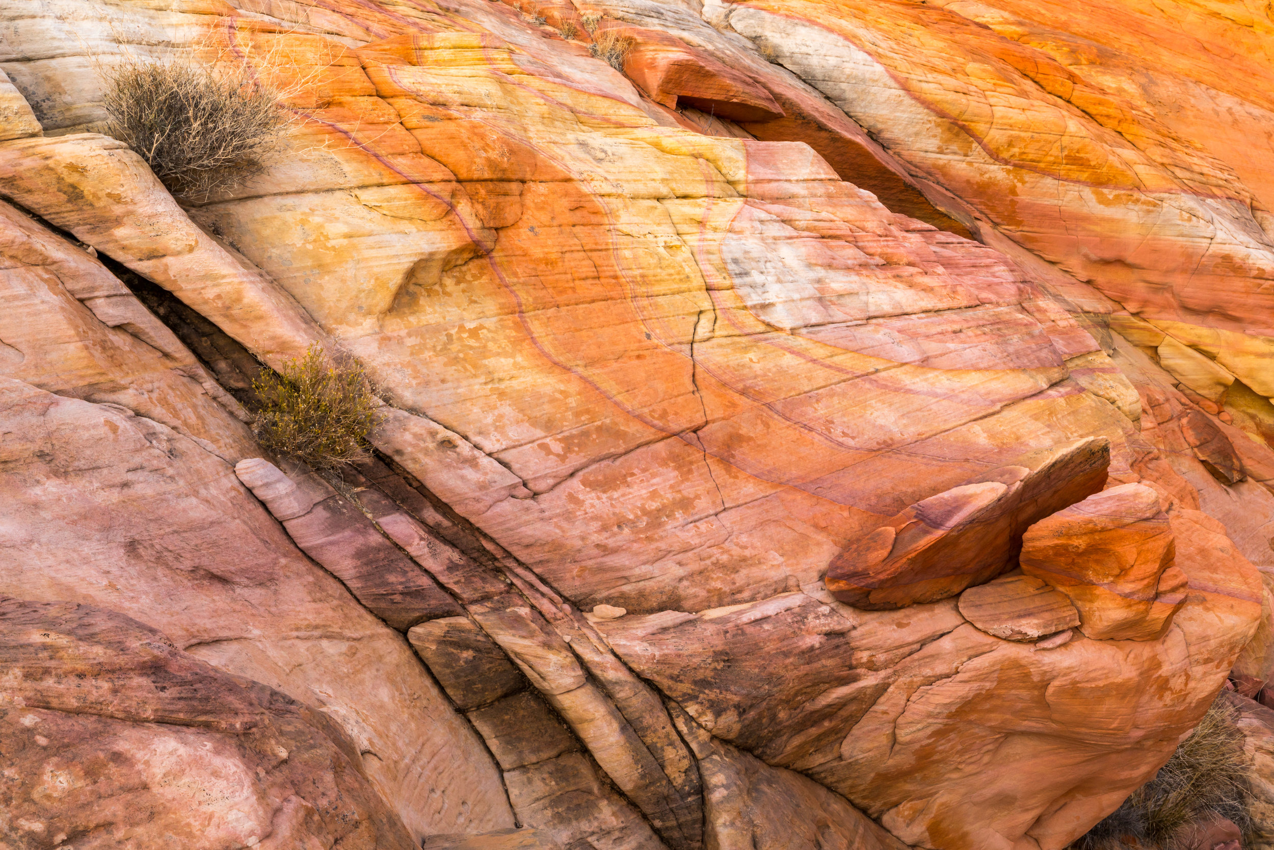 Valley of Fire, Image # 0695