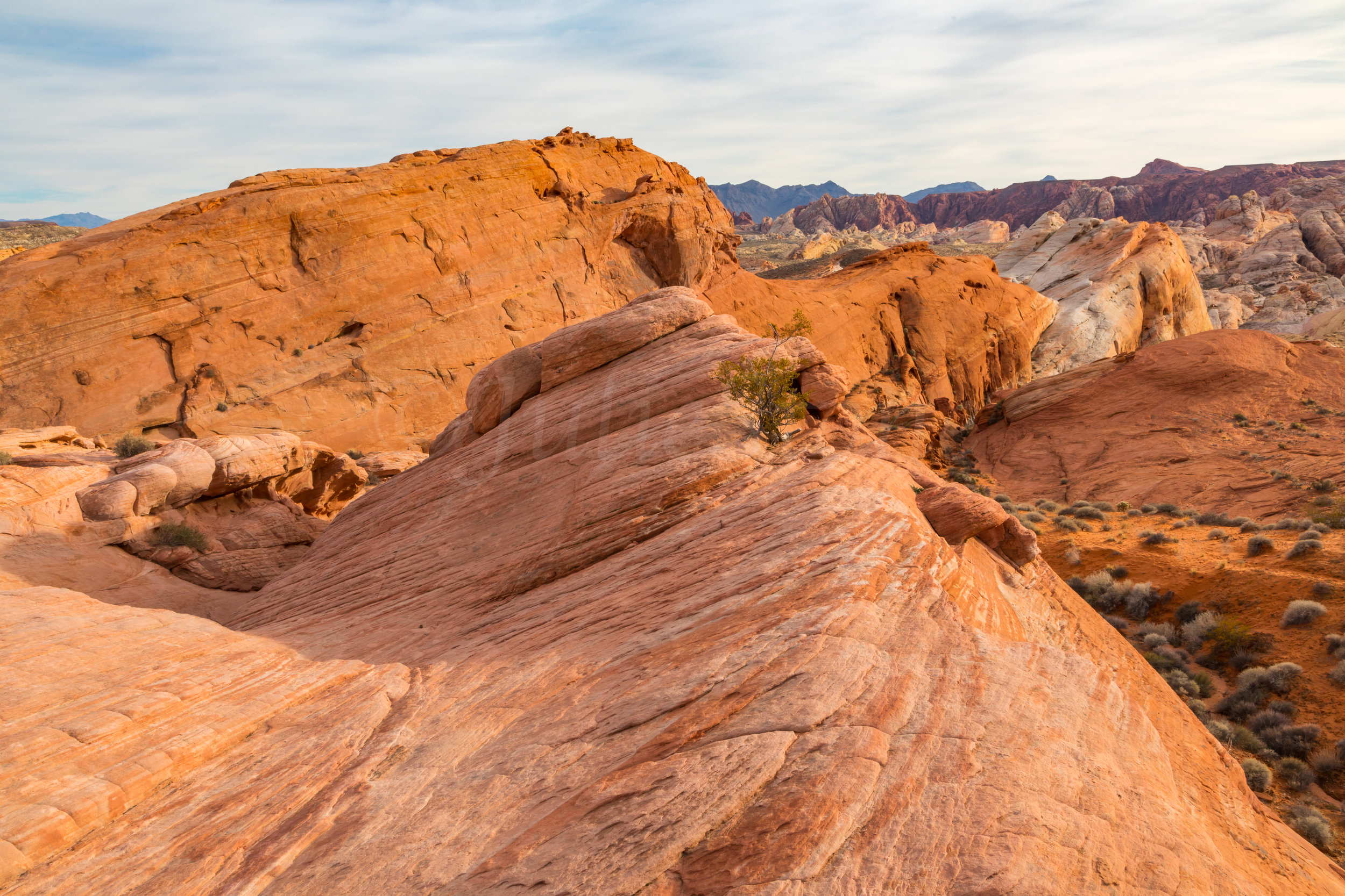 Valley of Fire, Image # 0396