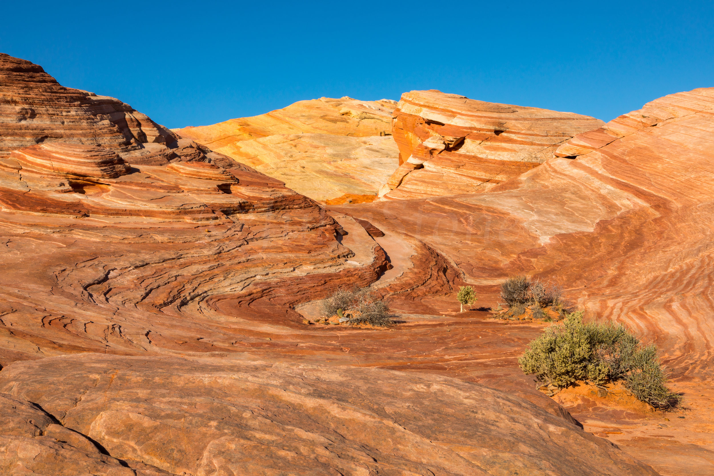 Valley of Fire, Image # 1059
