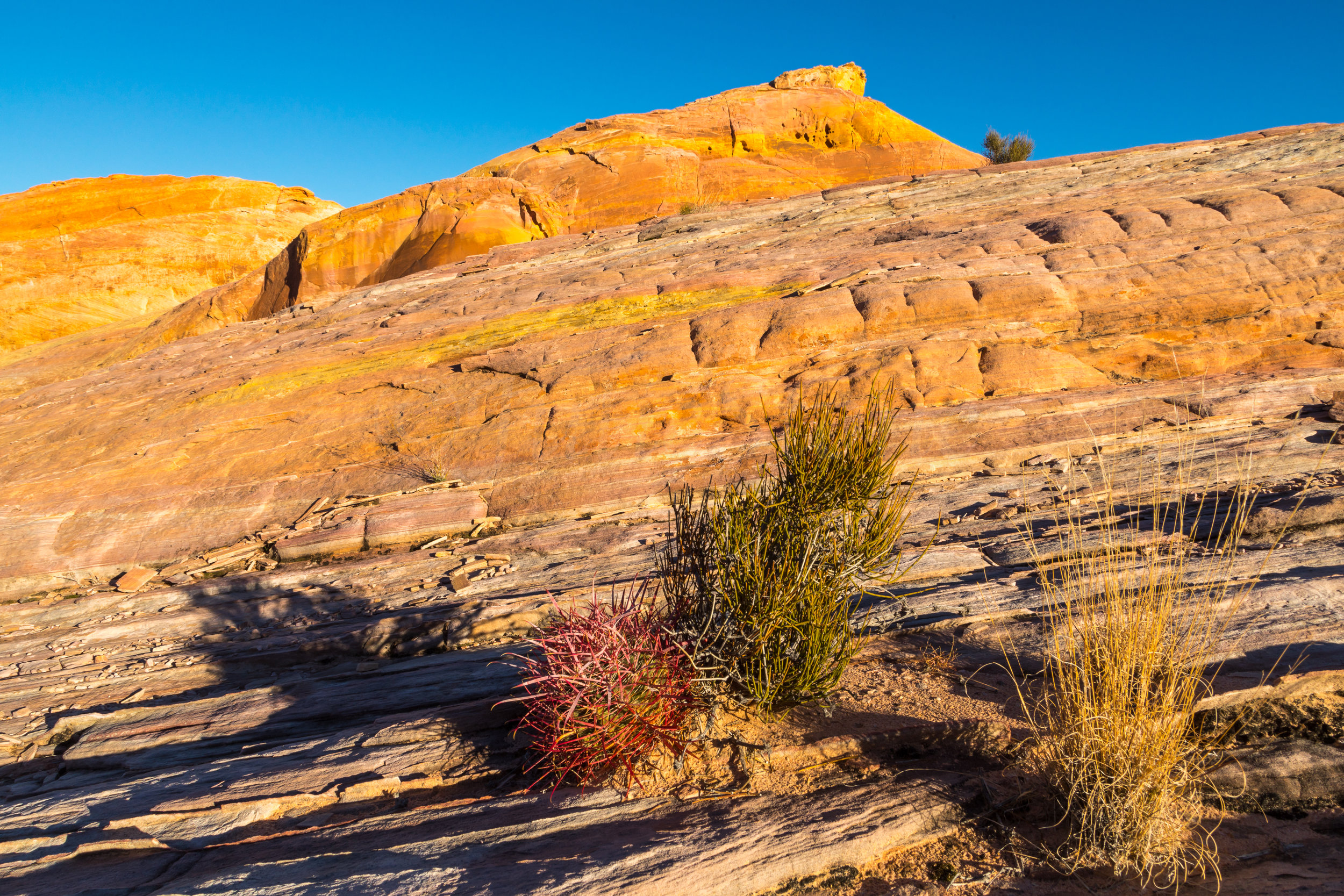 Valley of Fire, Image # 2104