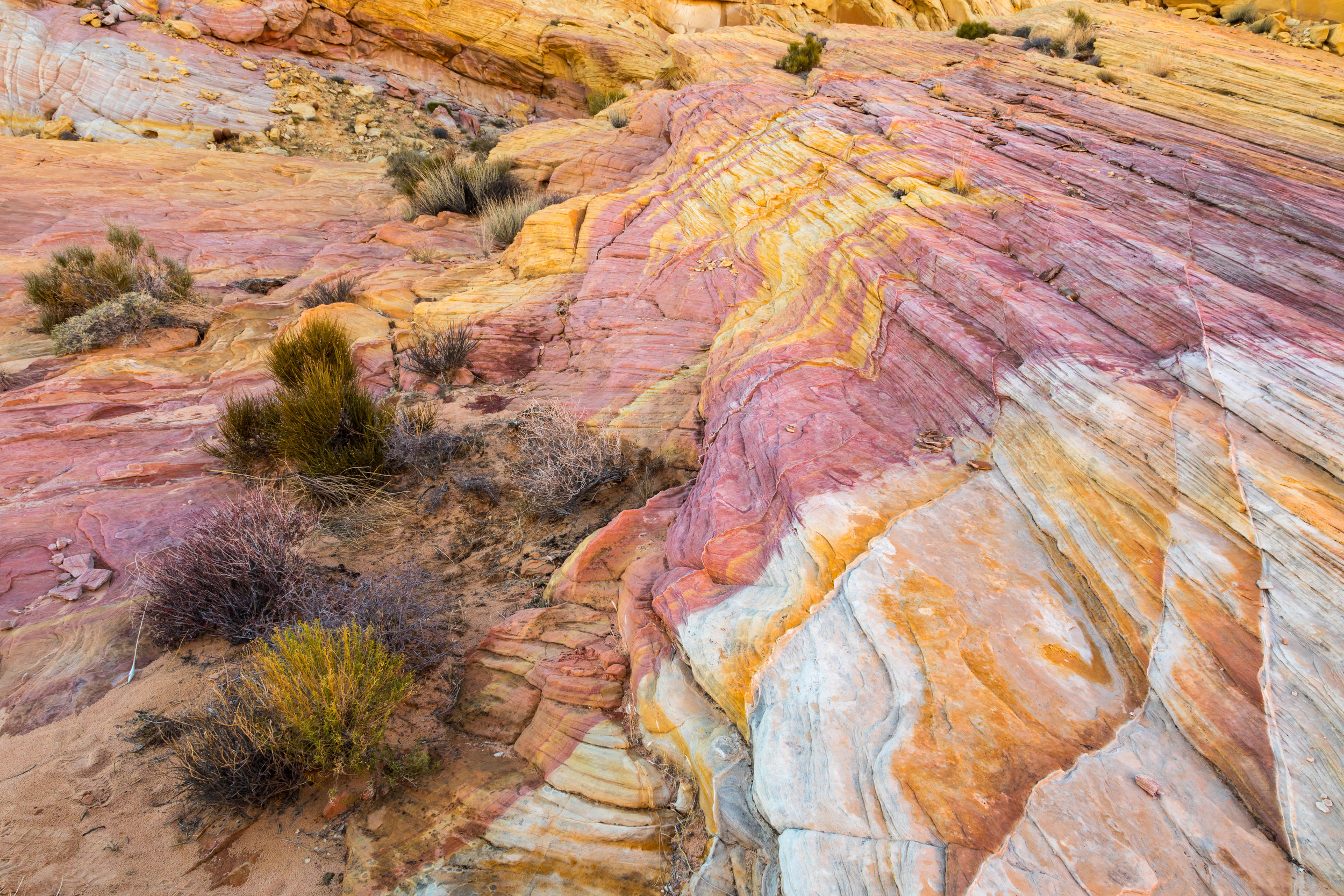 Valley of Fire, Image # 2273