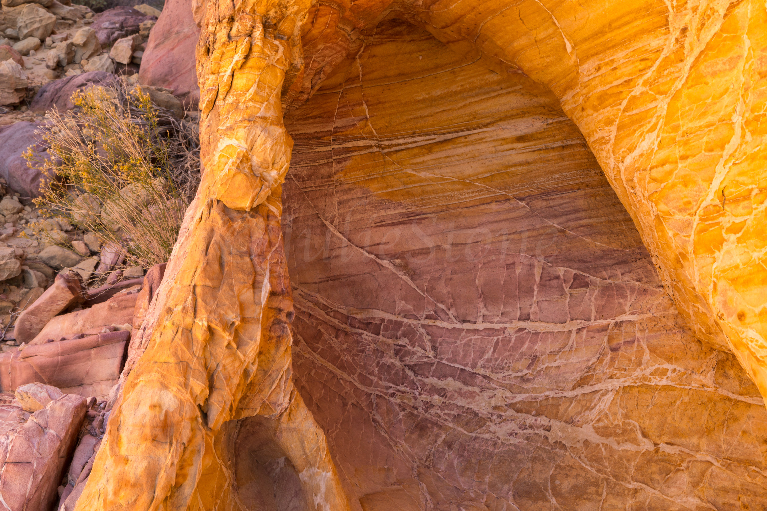Valley of Fire, Image # 2968