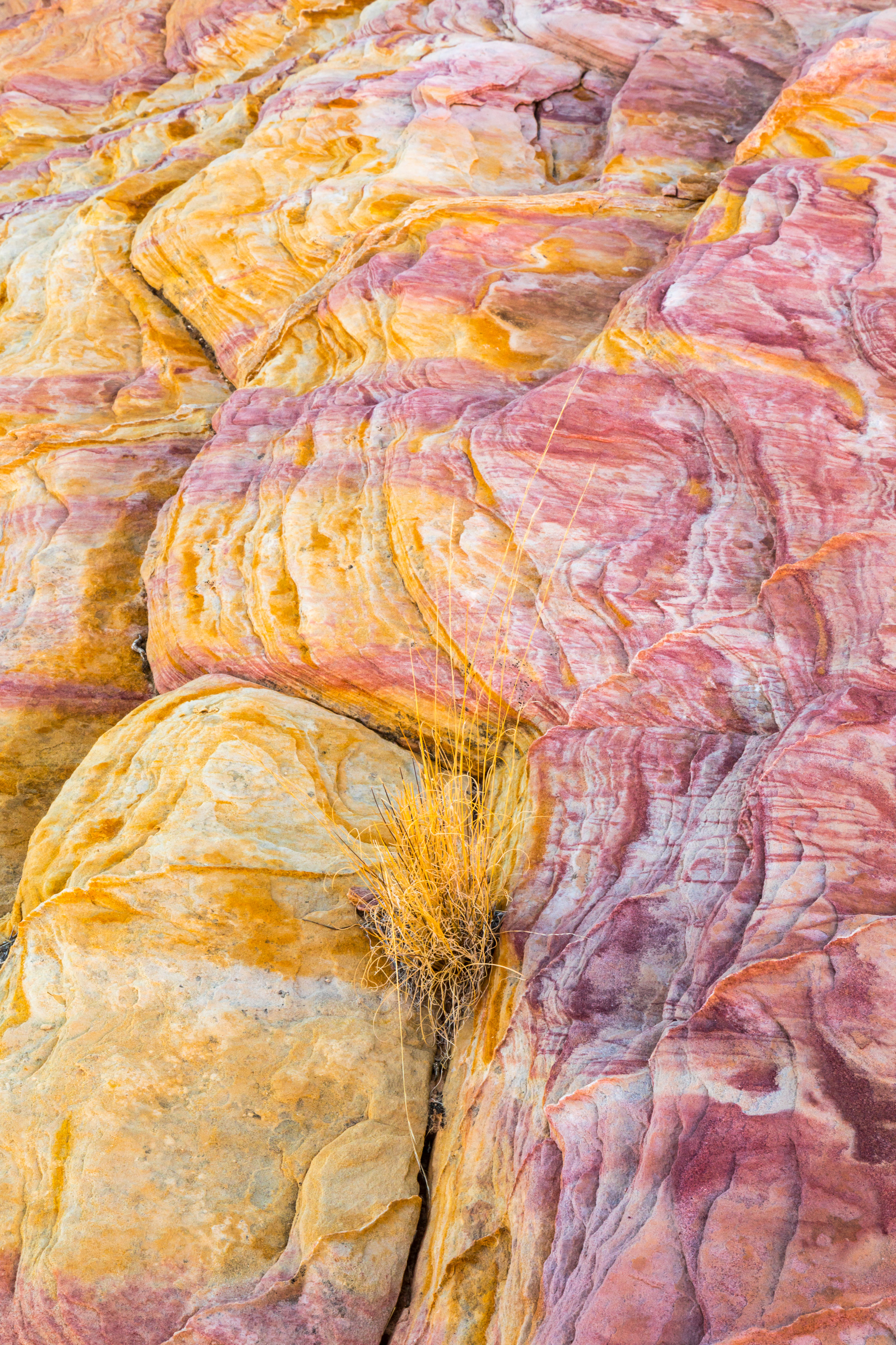 Valley of Fire, Image # 2349