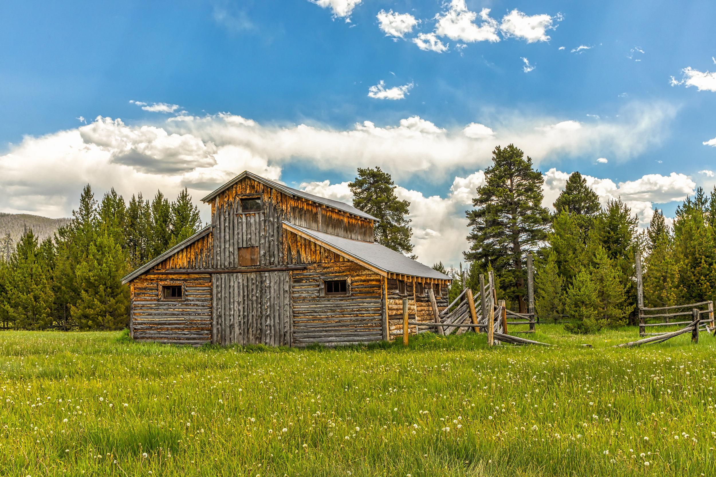 Little Buckaroo Barn, Image # 0596