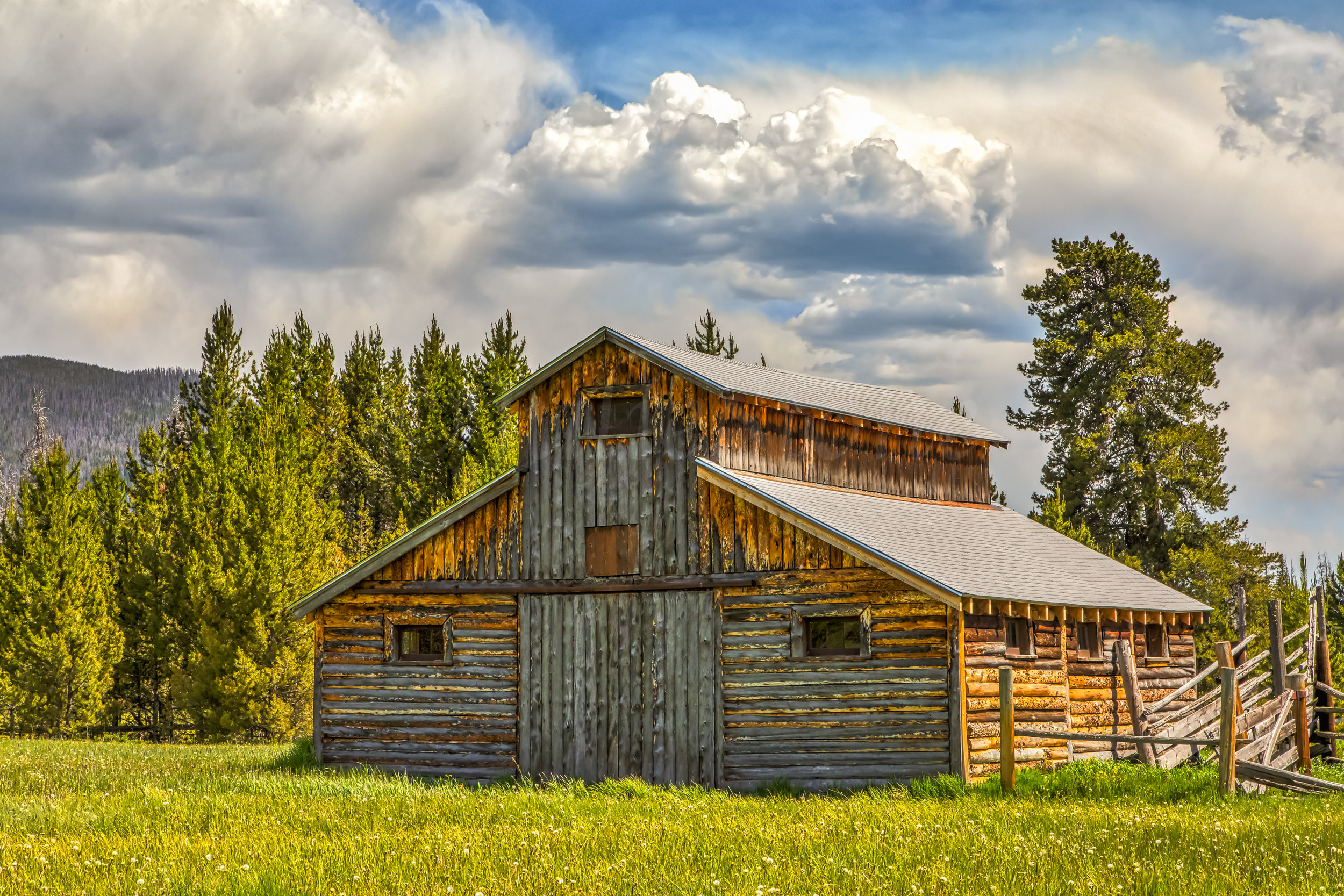 Little Buckaroo Barn, Image # 1310