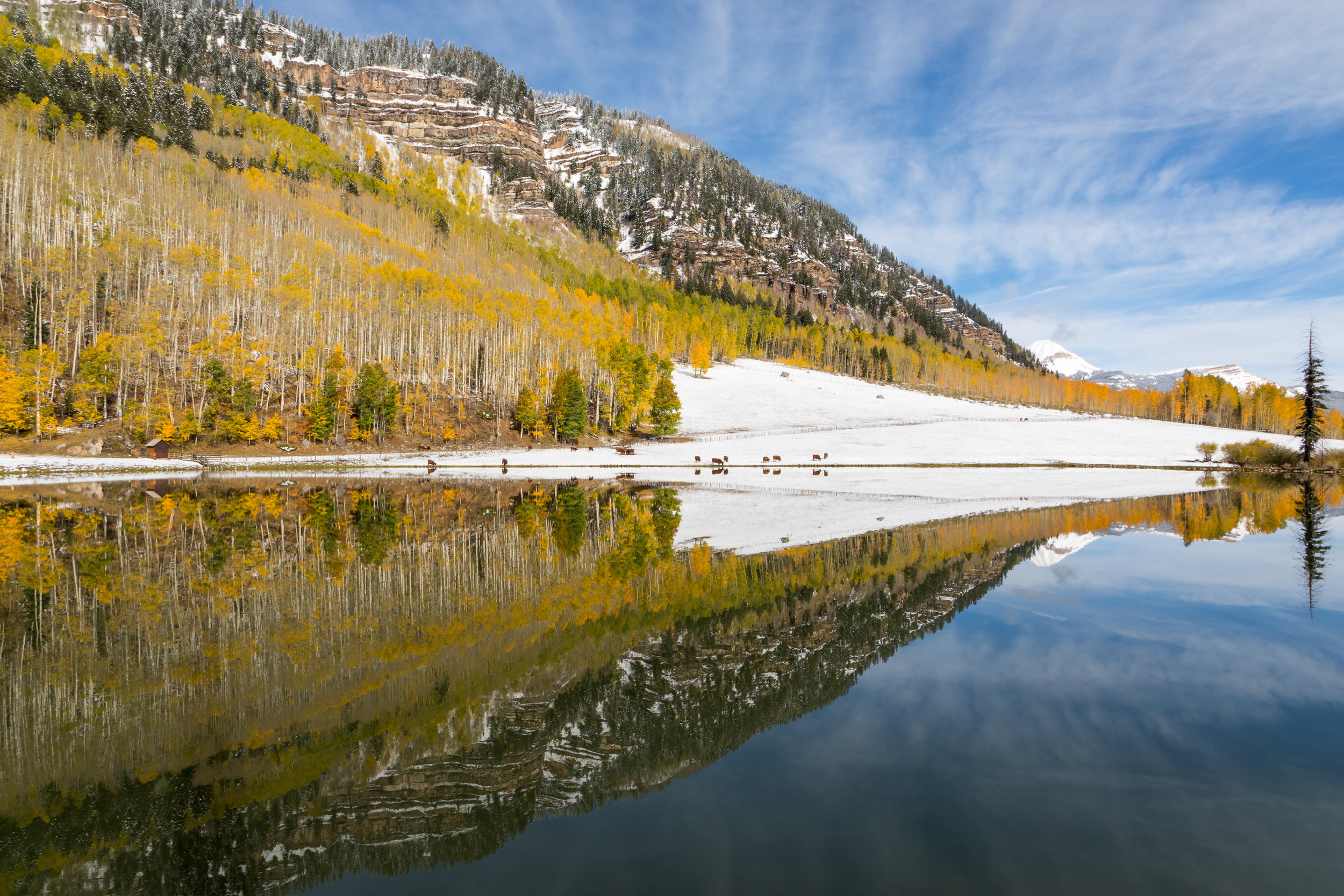 Hotter Pond, Image # 9724