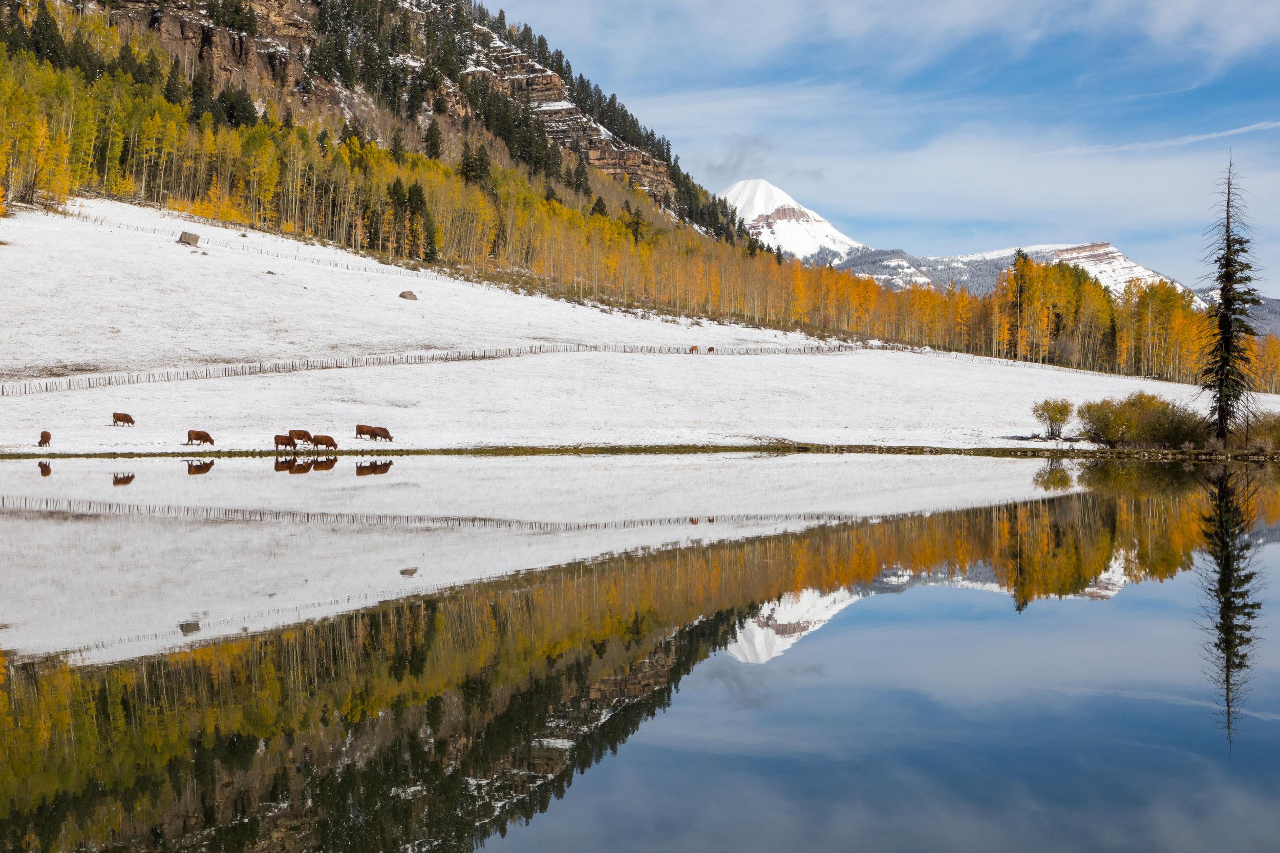 Hotter Pond, Image # 9817