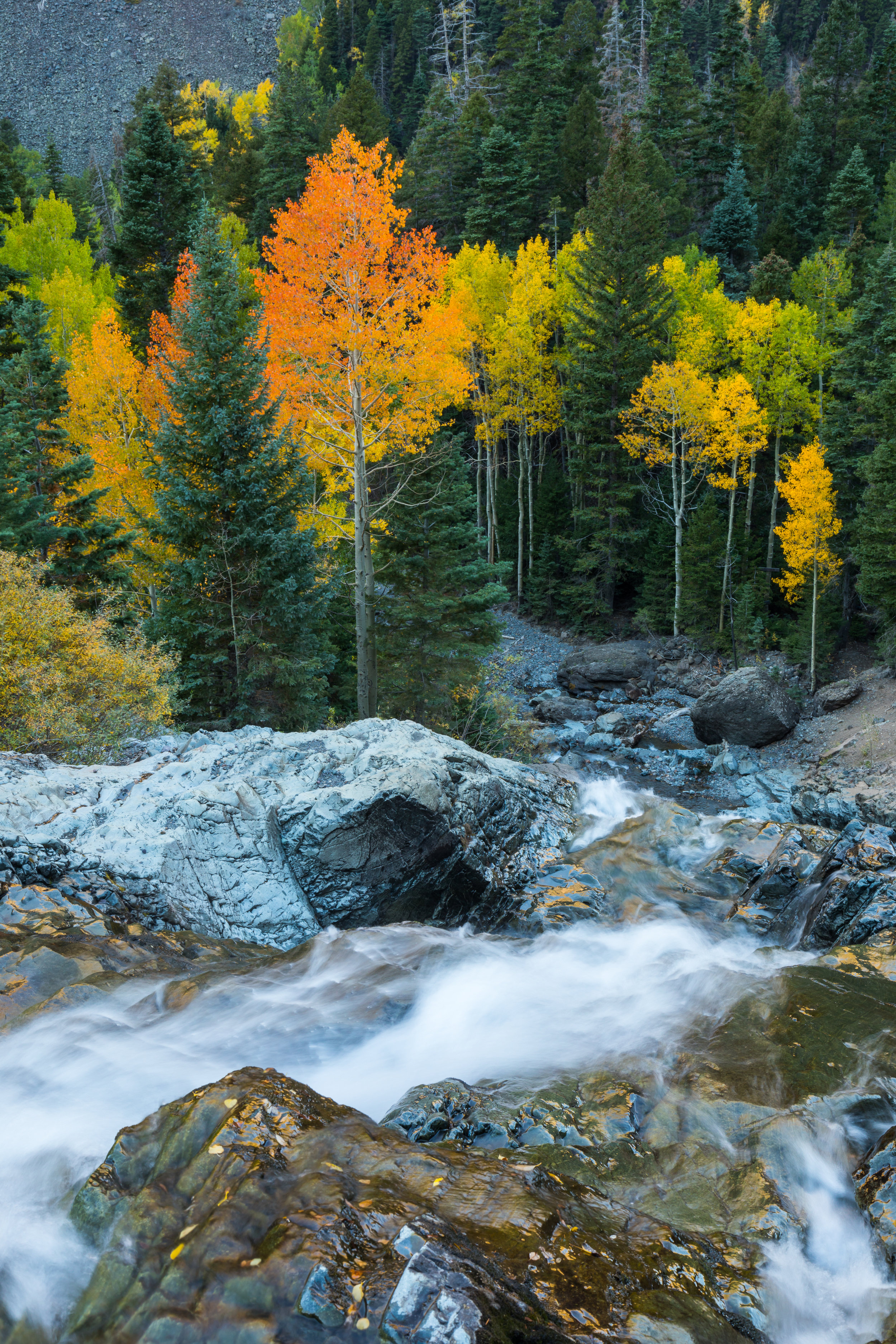 Ouray Waterfall, Image # 9168
