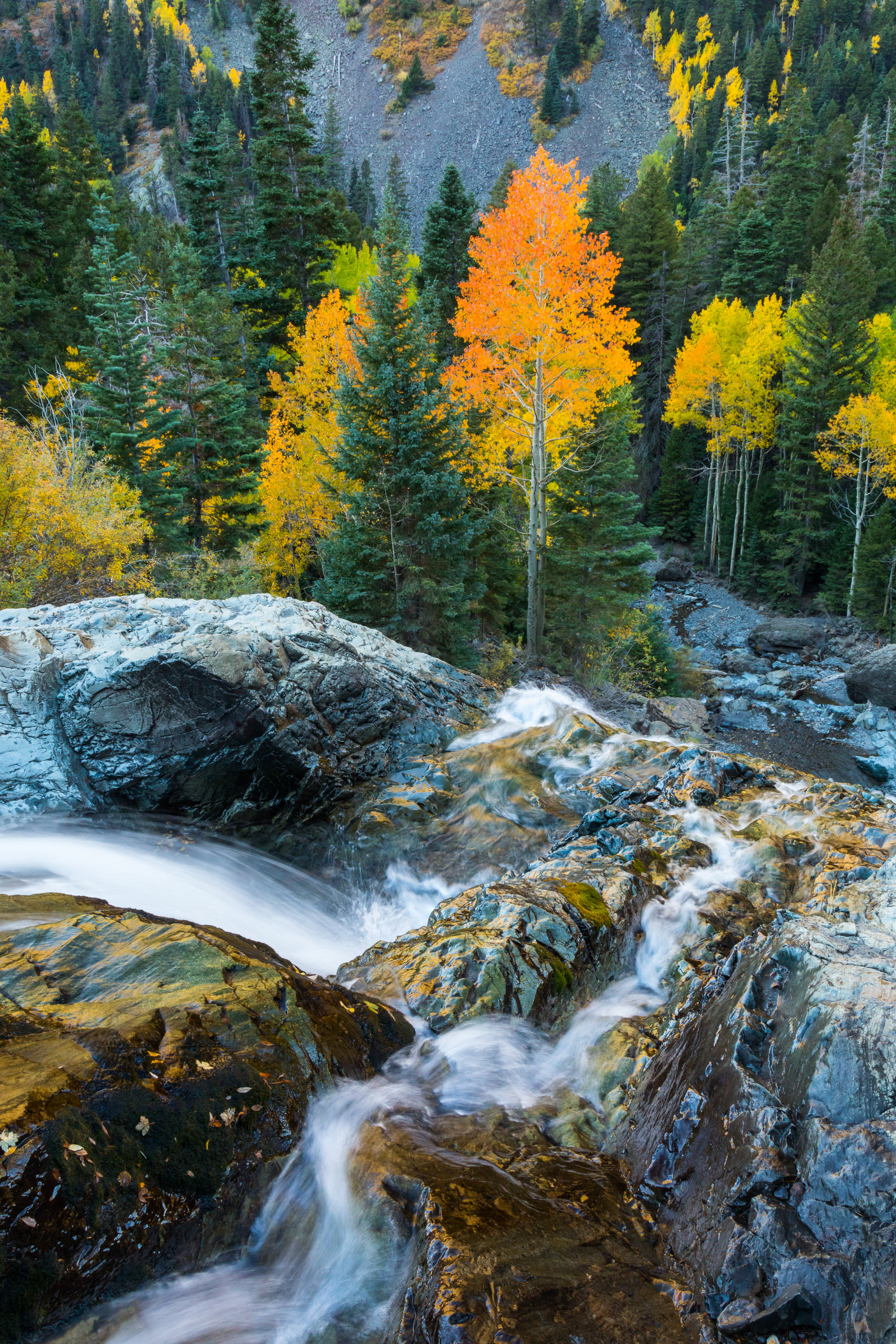 Ouray Waterfall, Image # 9438