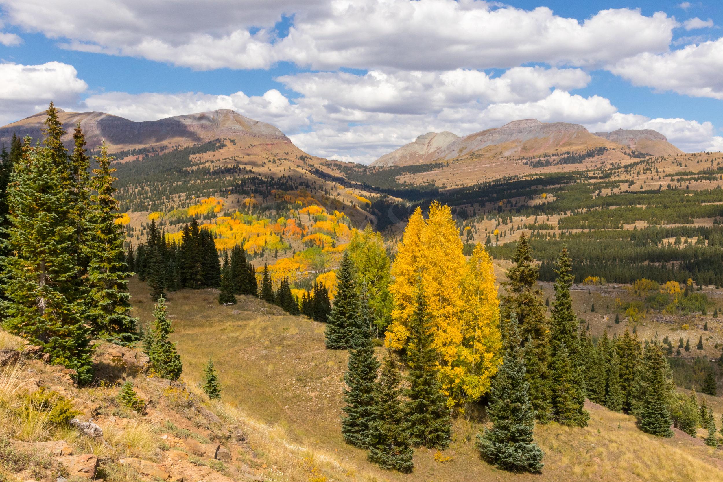 Deer Creek, Image # 7333