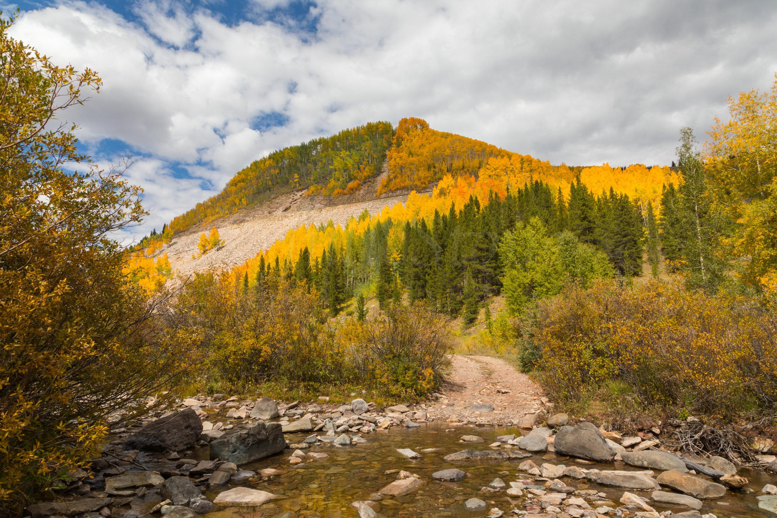 Lime Creek, Image # 4011