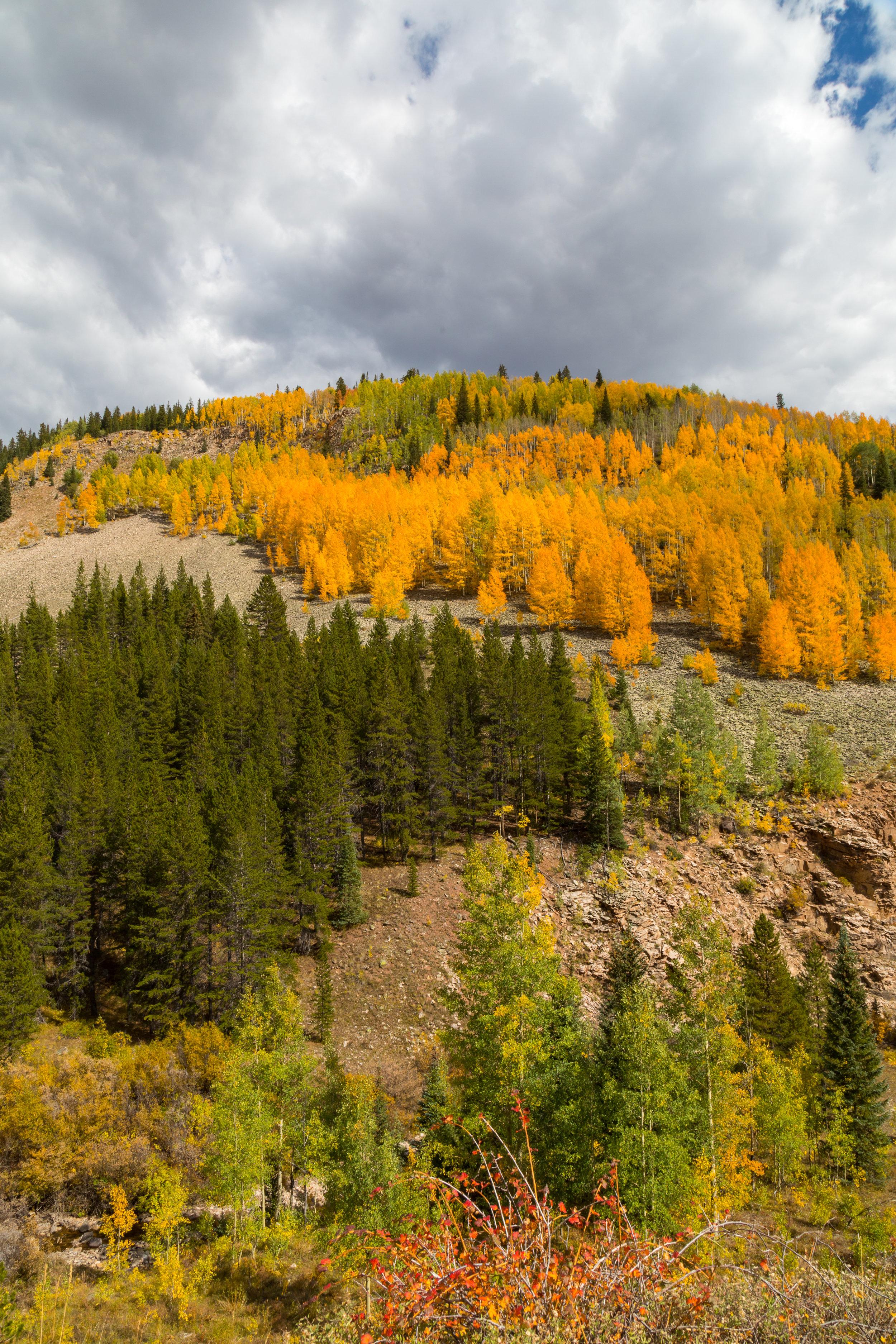 Lime Creek, Image # 4092