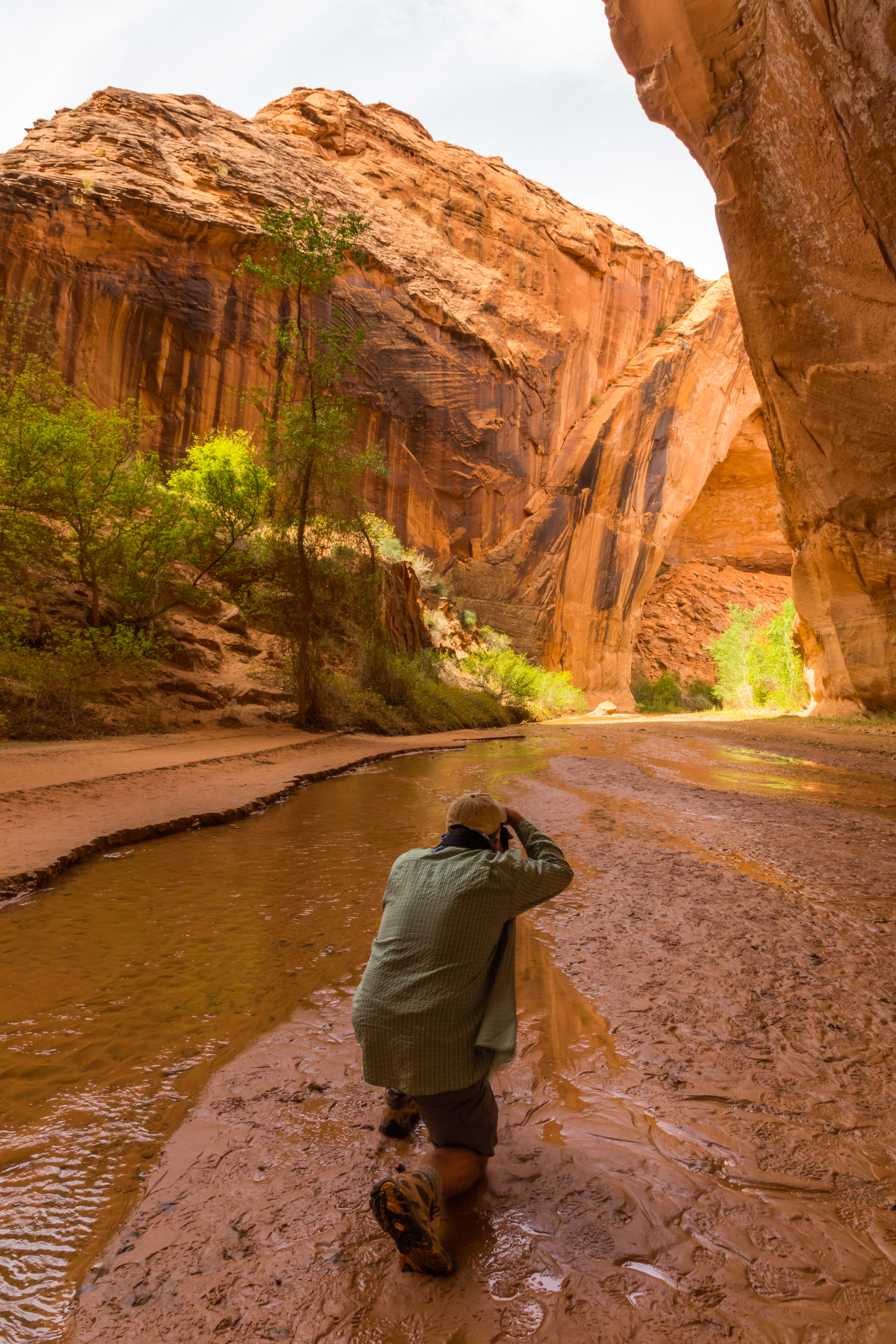 Coyote Gulch, Dave, Image # 1151