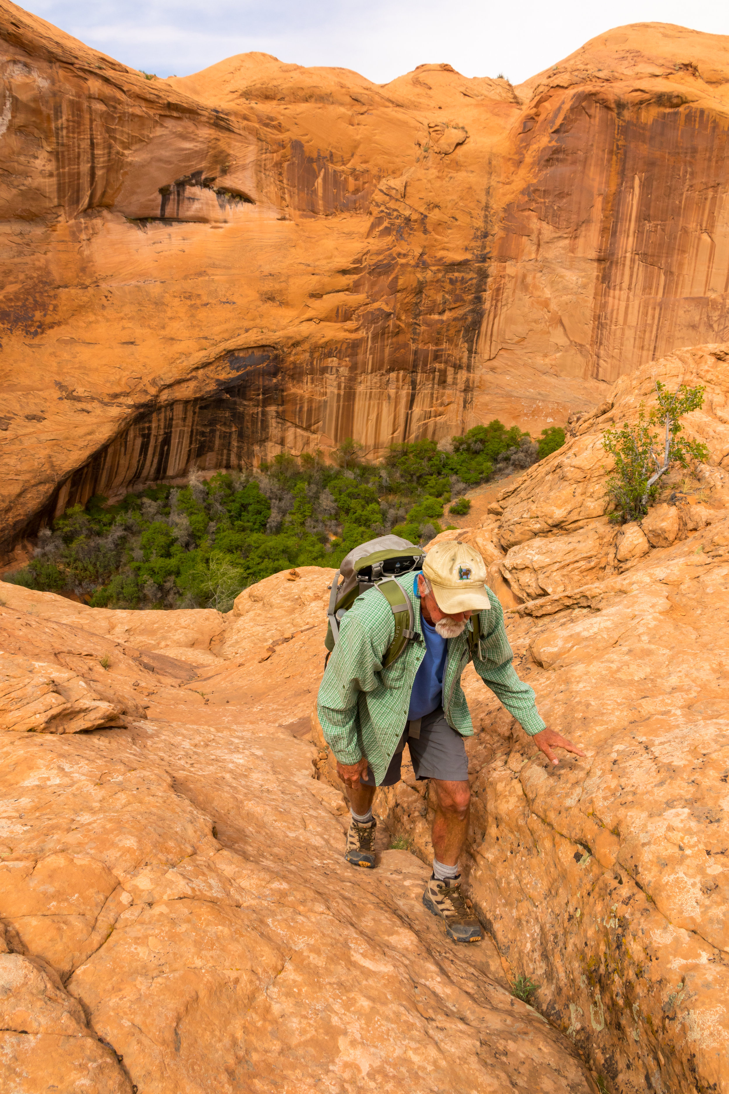 Coyote Gulch, Dave, Image # 1510