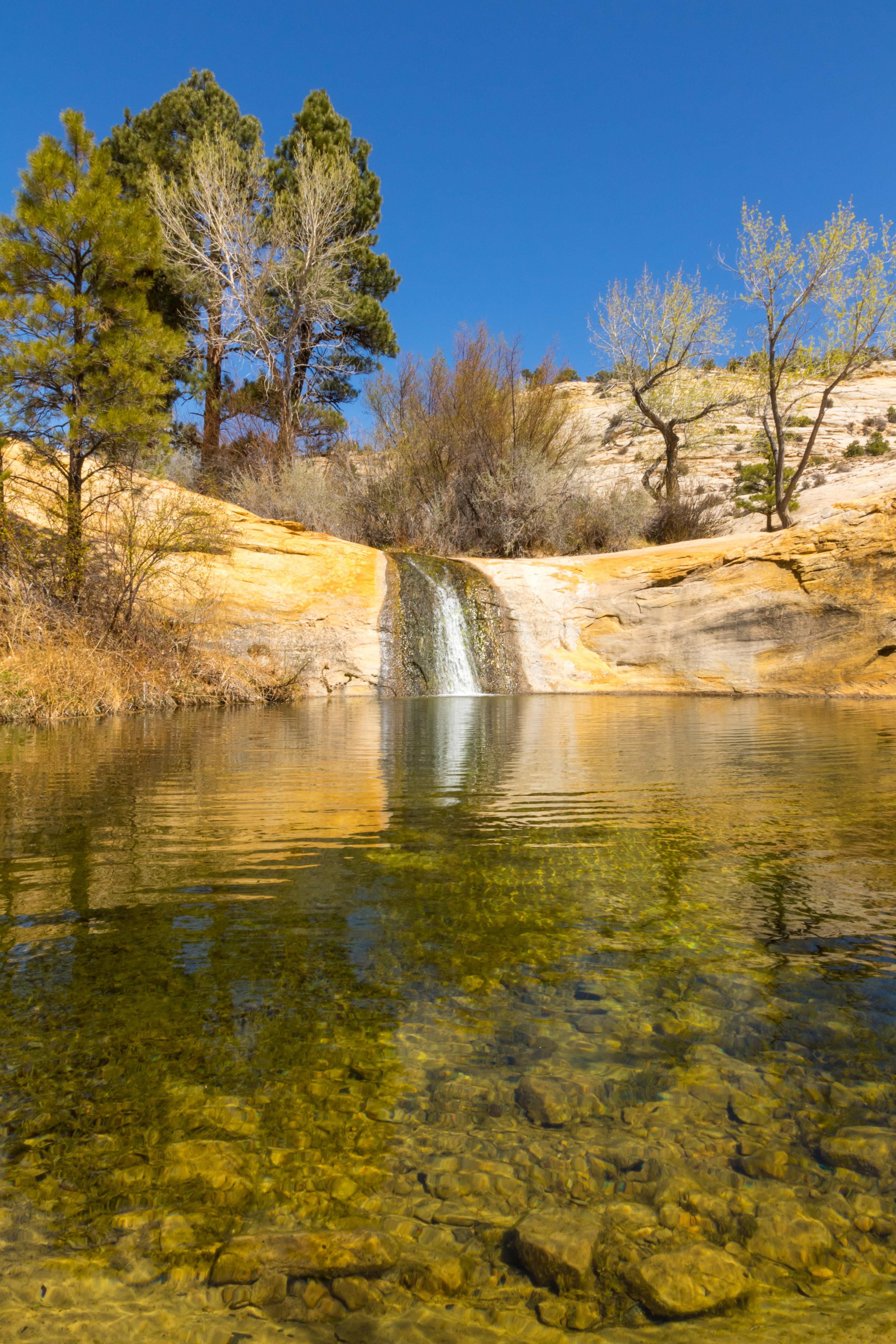 Upper Calf Creek Falls, Image # 2642