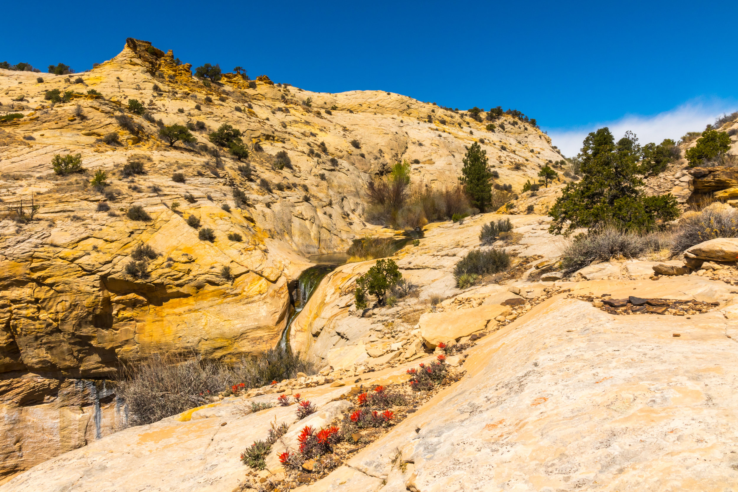 Upper Calf Creek Falls, Image # 2476