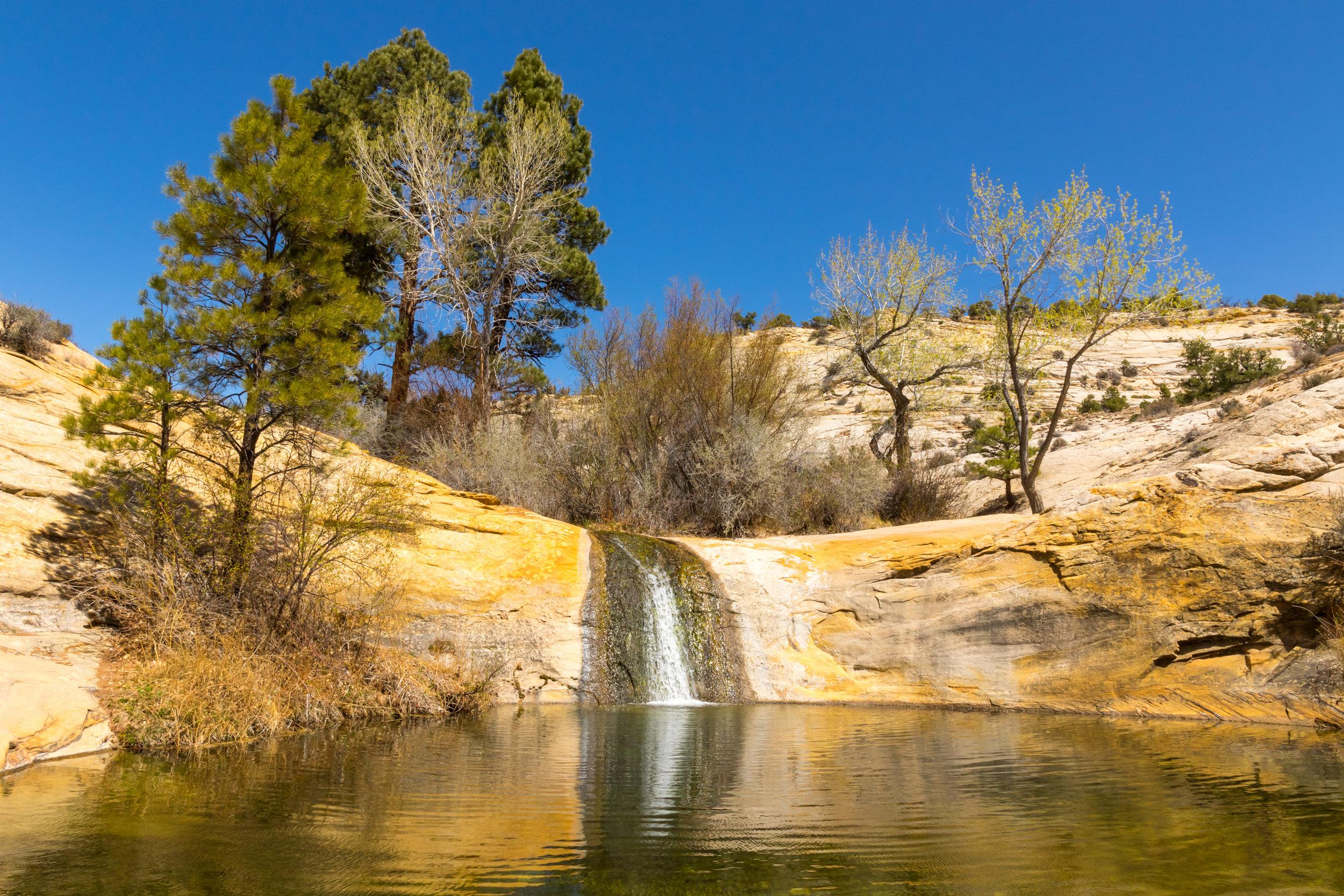 Upper Calf Creek Falls, Image # 2685