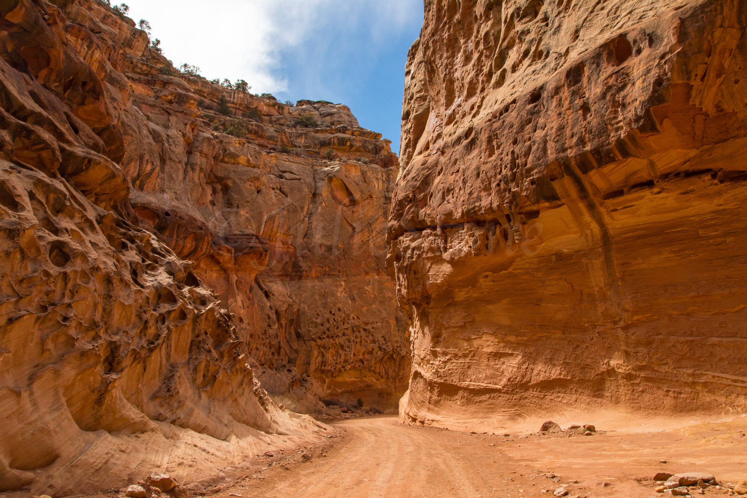 Capitol Reef National Park, Image # 0062