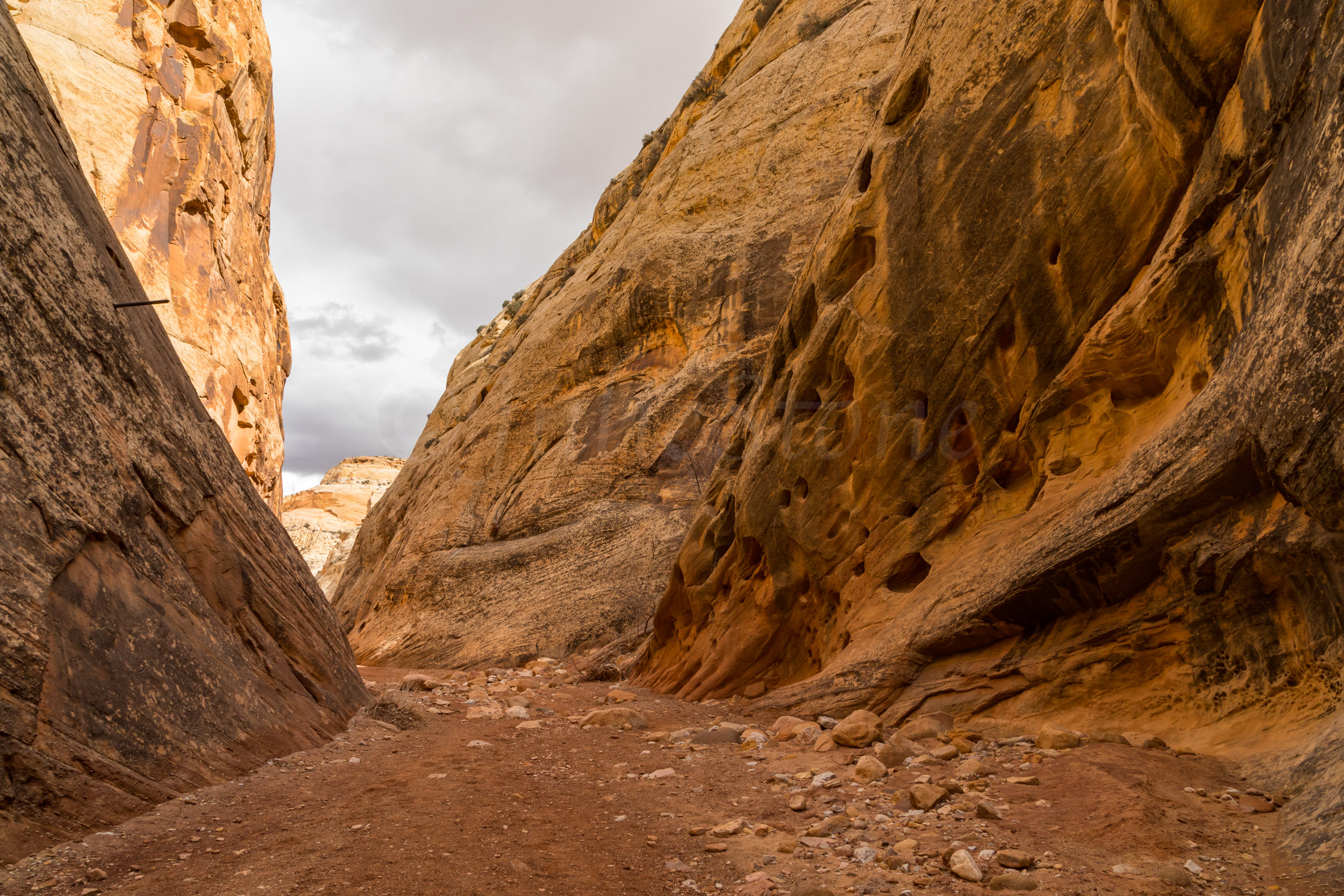 Capitol Reef National Park, Image # 0113