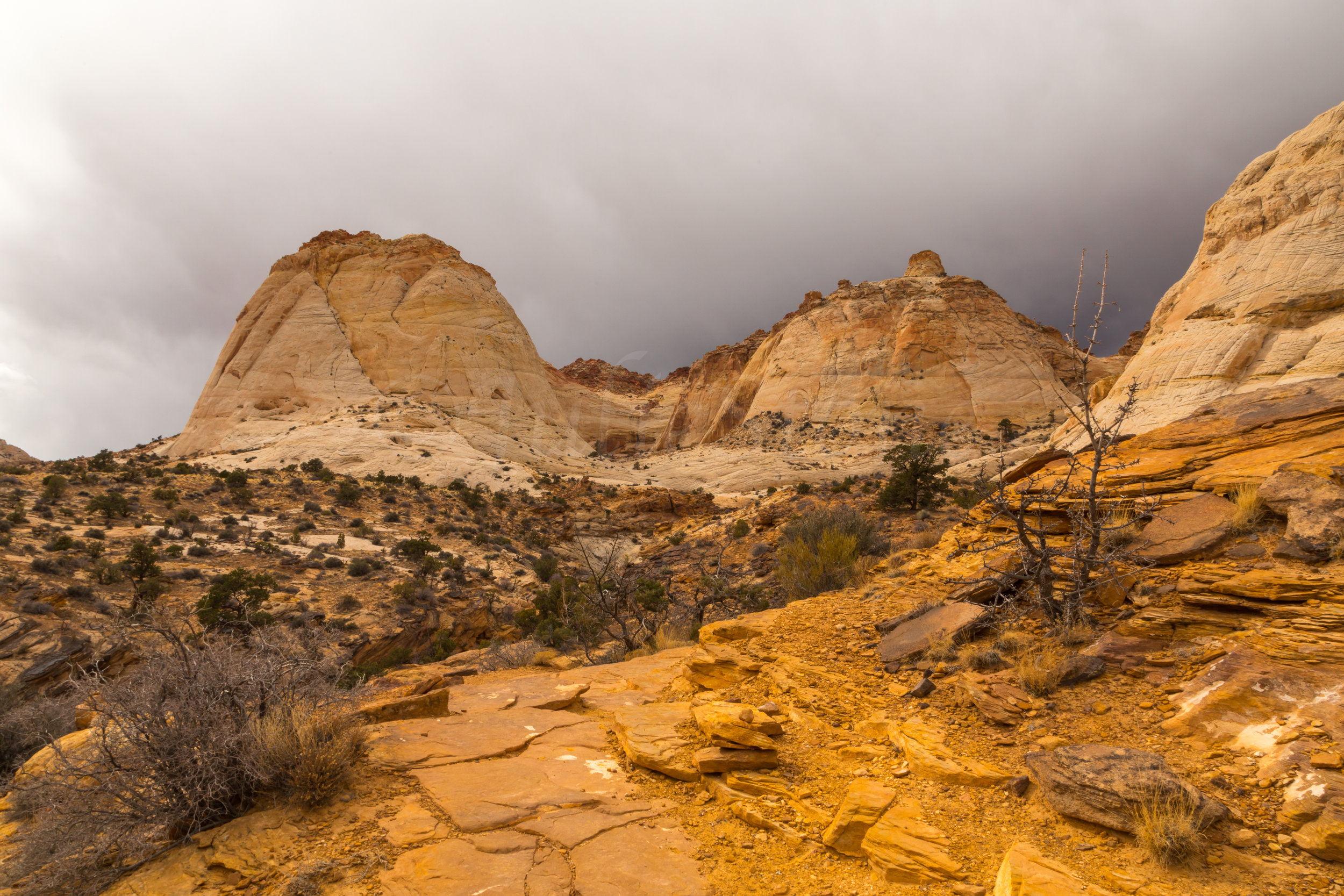Capitol Reef National Park, Image # 0352