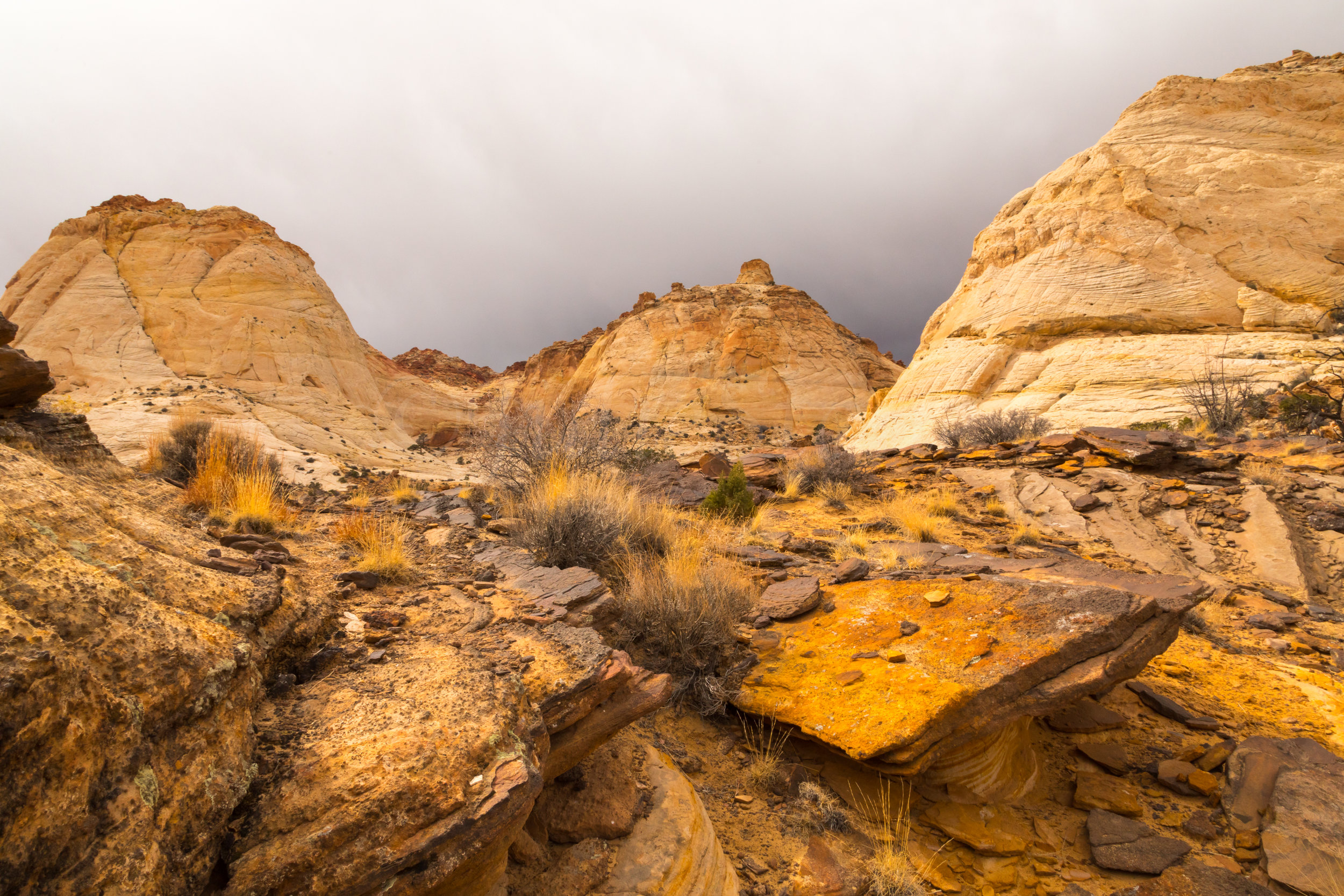 Capitol Reef National Park, Image # 0358