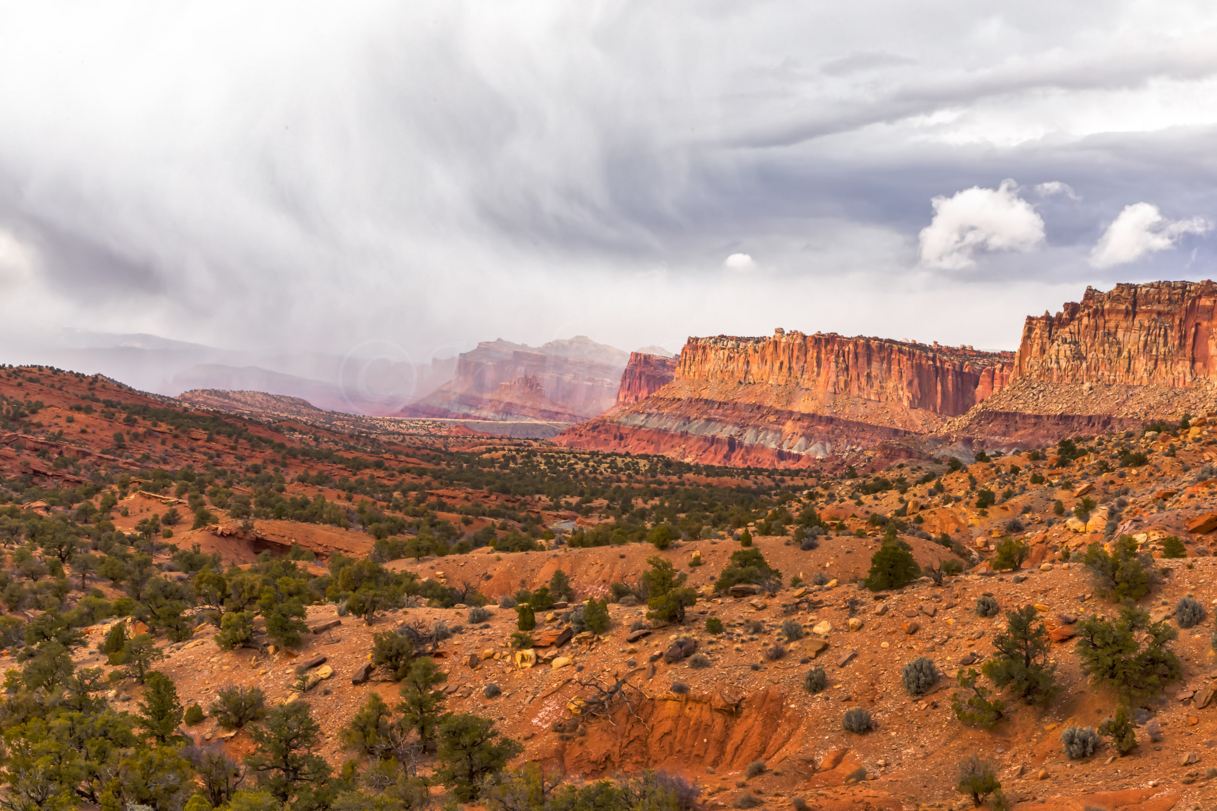 Capitol Reef National Park, Image # 0469