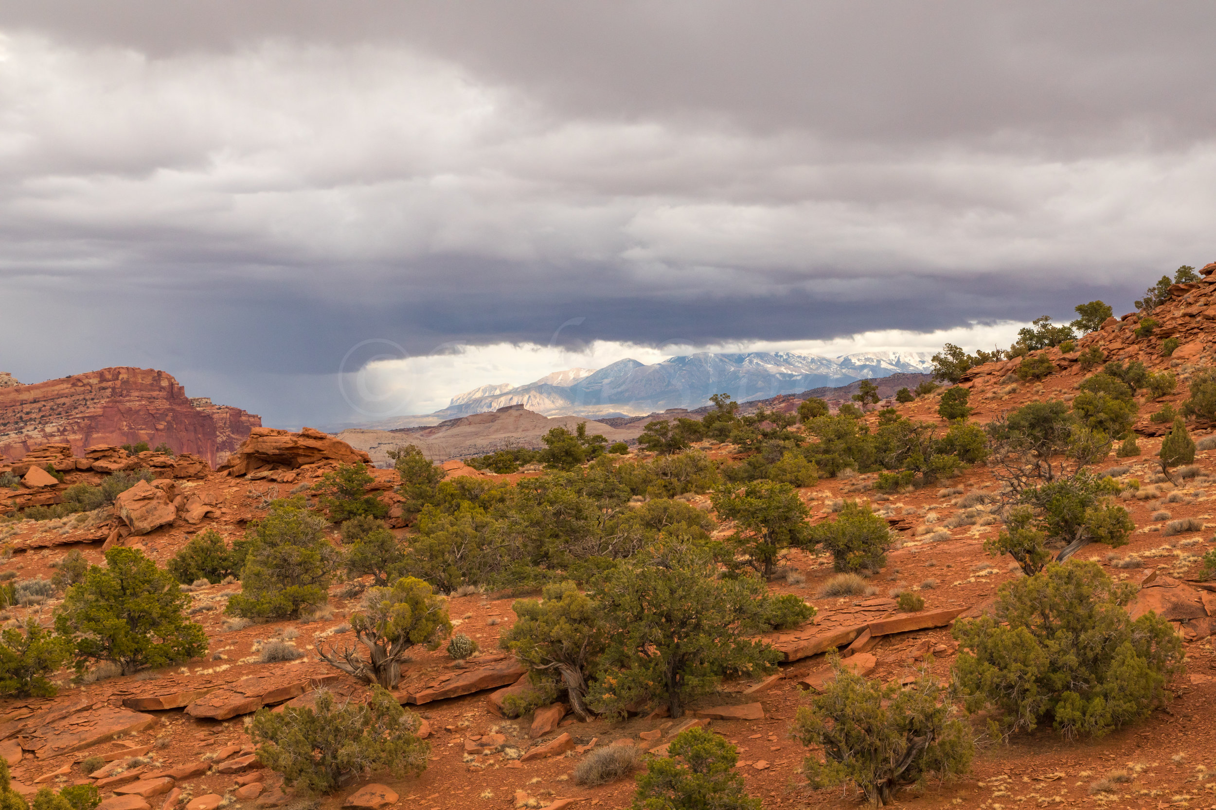 Capitol Reef National Park, Image # 0516