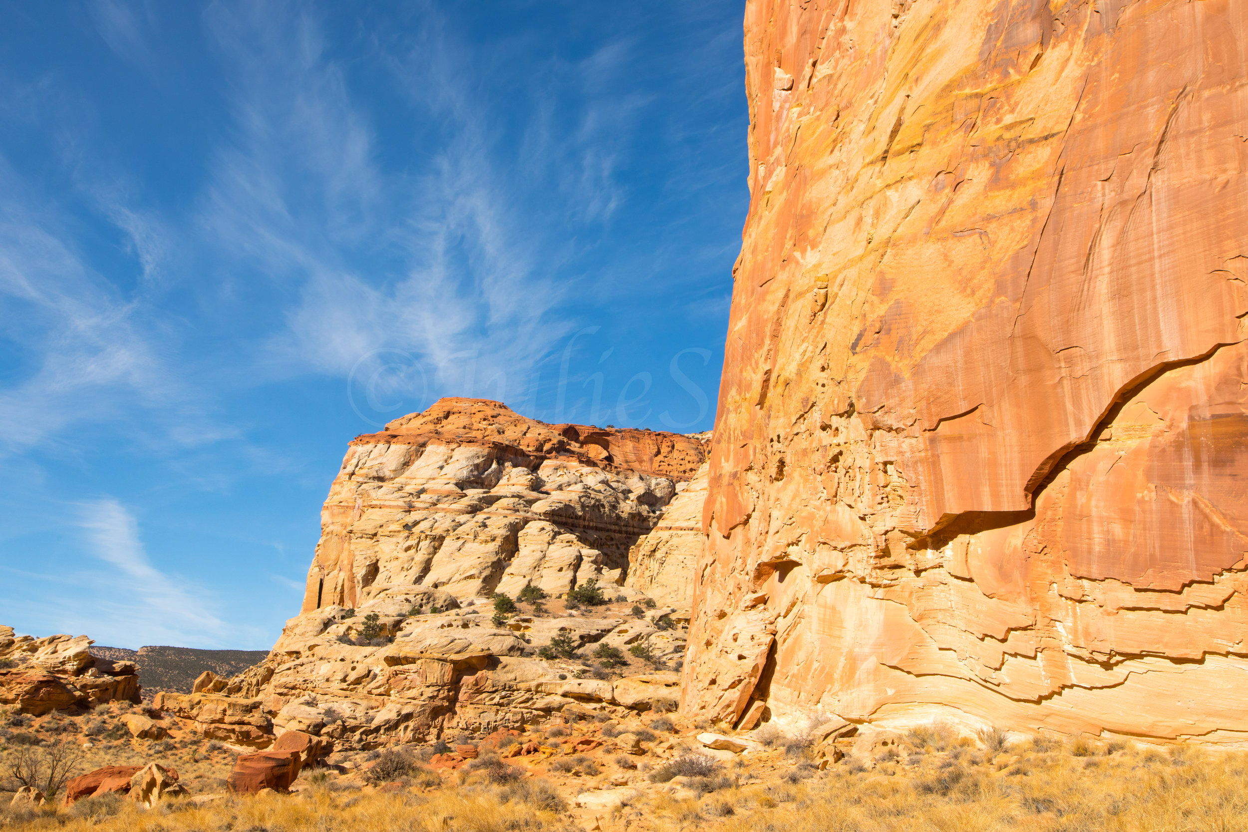 Capitol Reef National Park, Image # 0813