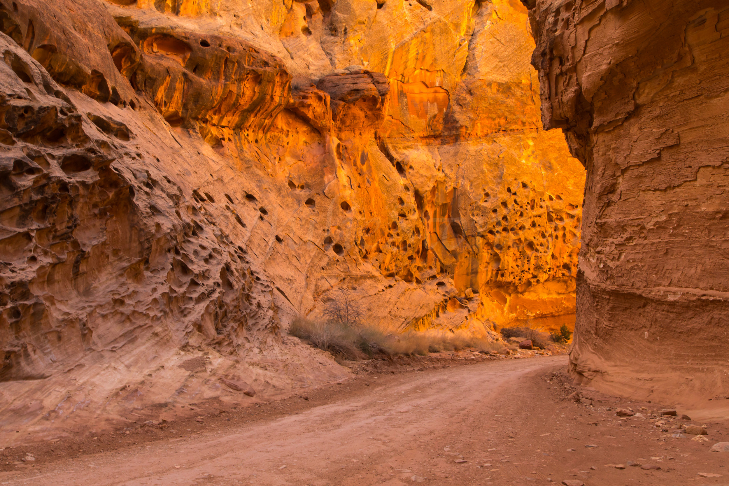 Capitol Reef National Park, Image # 0859