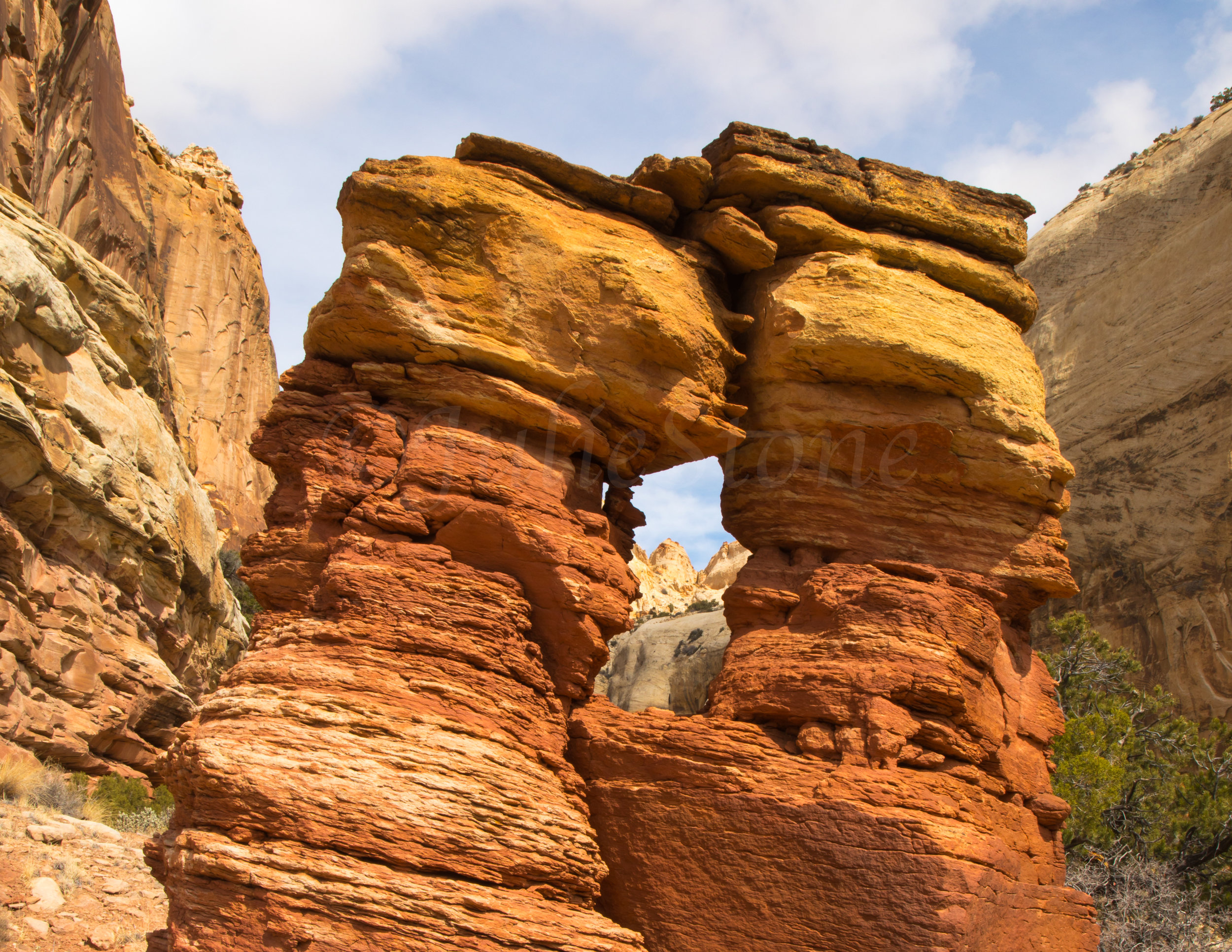 Capitol Reef National Park, Image # 0898
