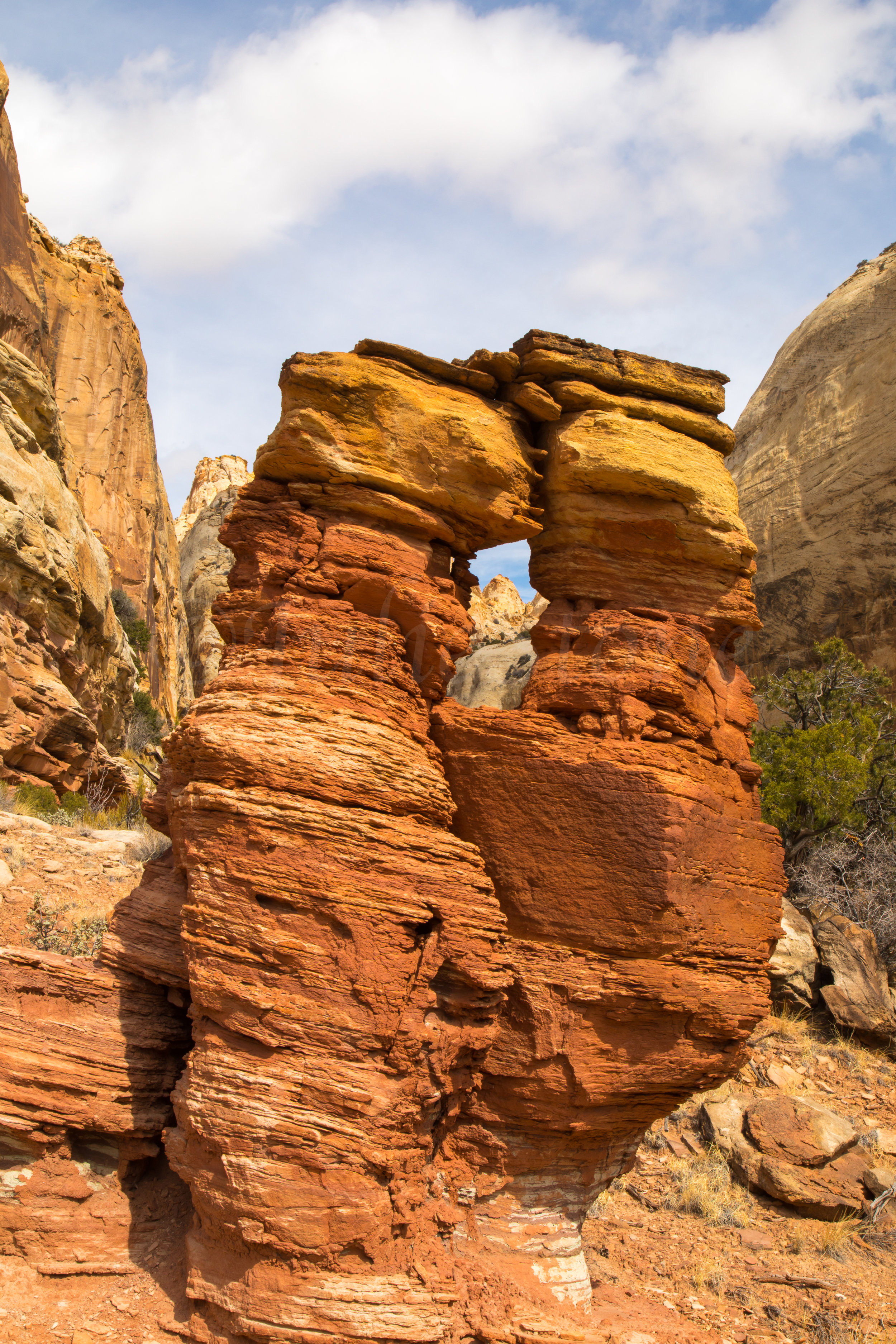 Capitol Reef National Park, Image # 0910