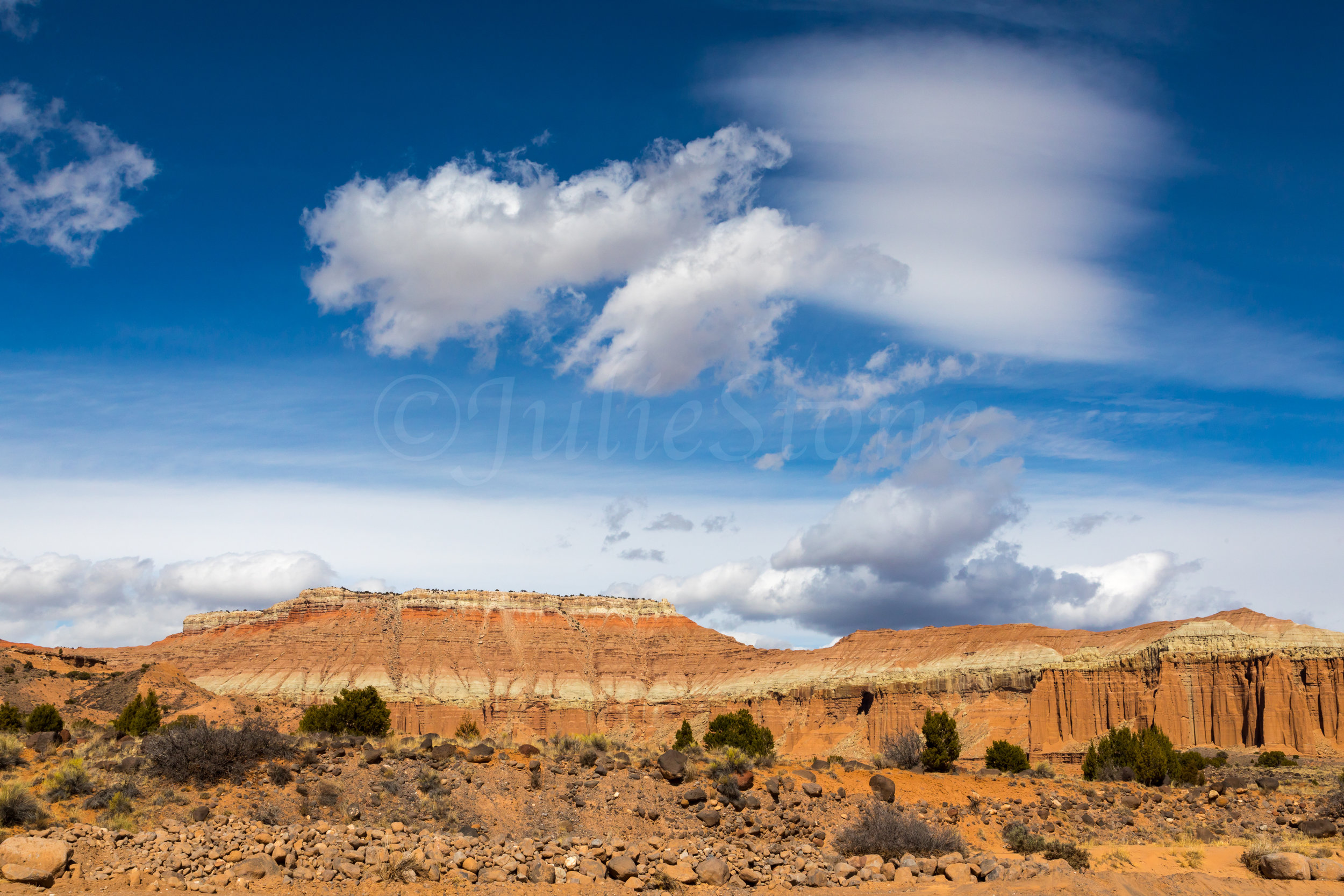 Capitol Reef National Park, Image # 1800