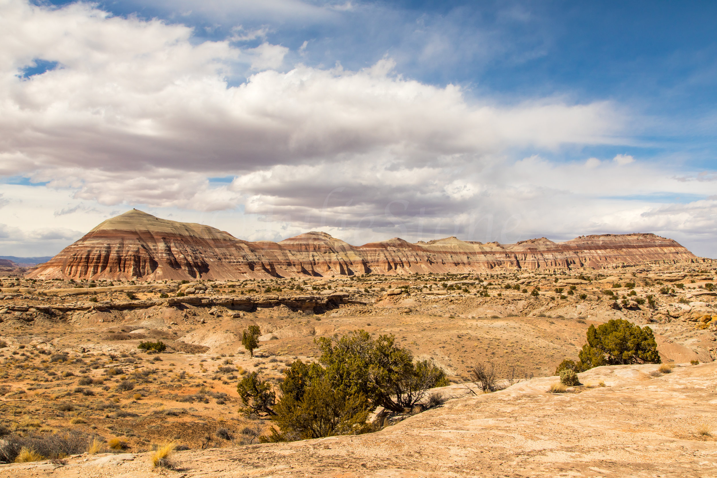 Capitol Reef National Park, Image # 2276