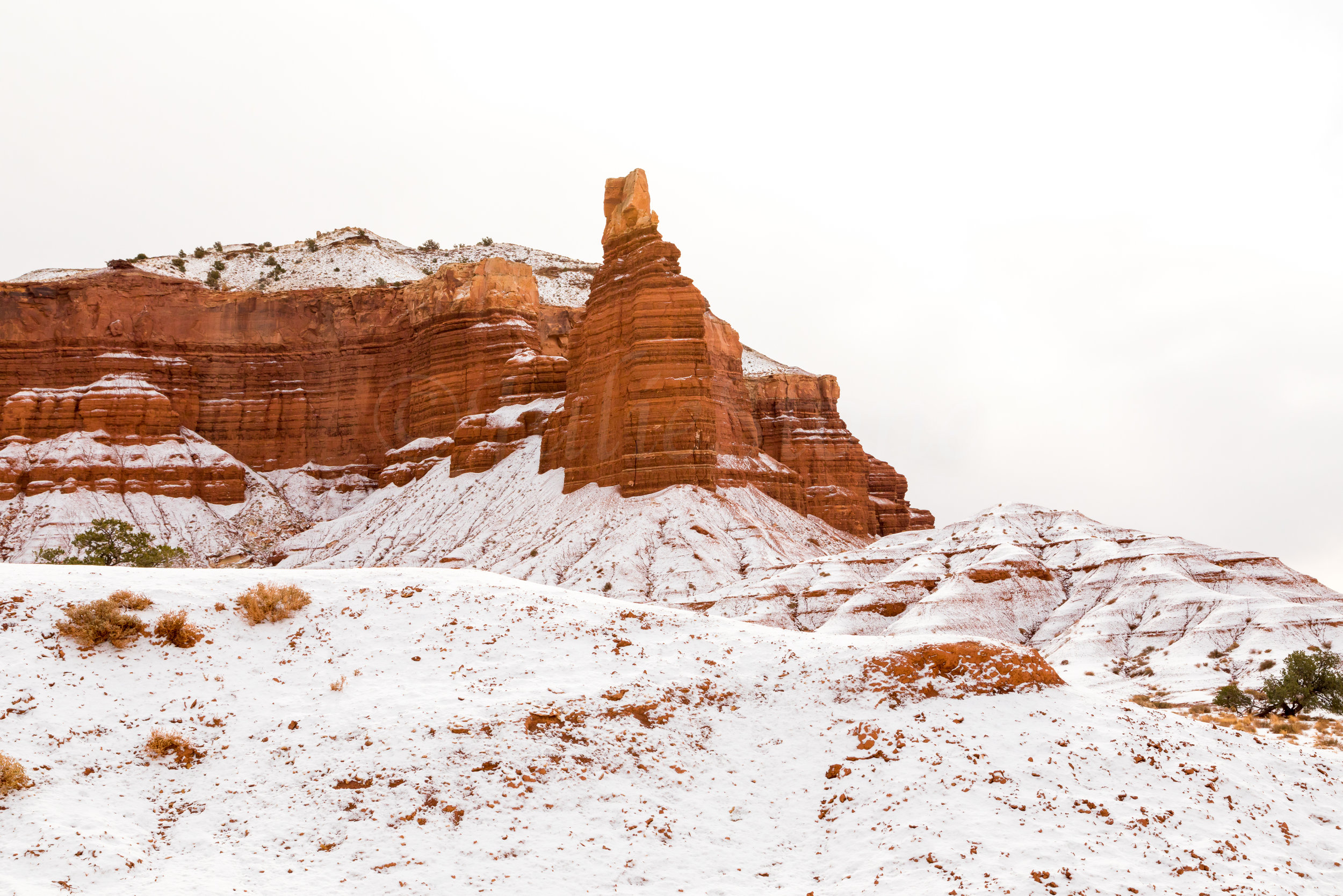 Capitol Reef National Park, Image # 2362