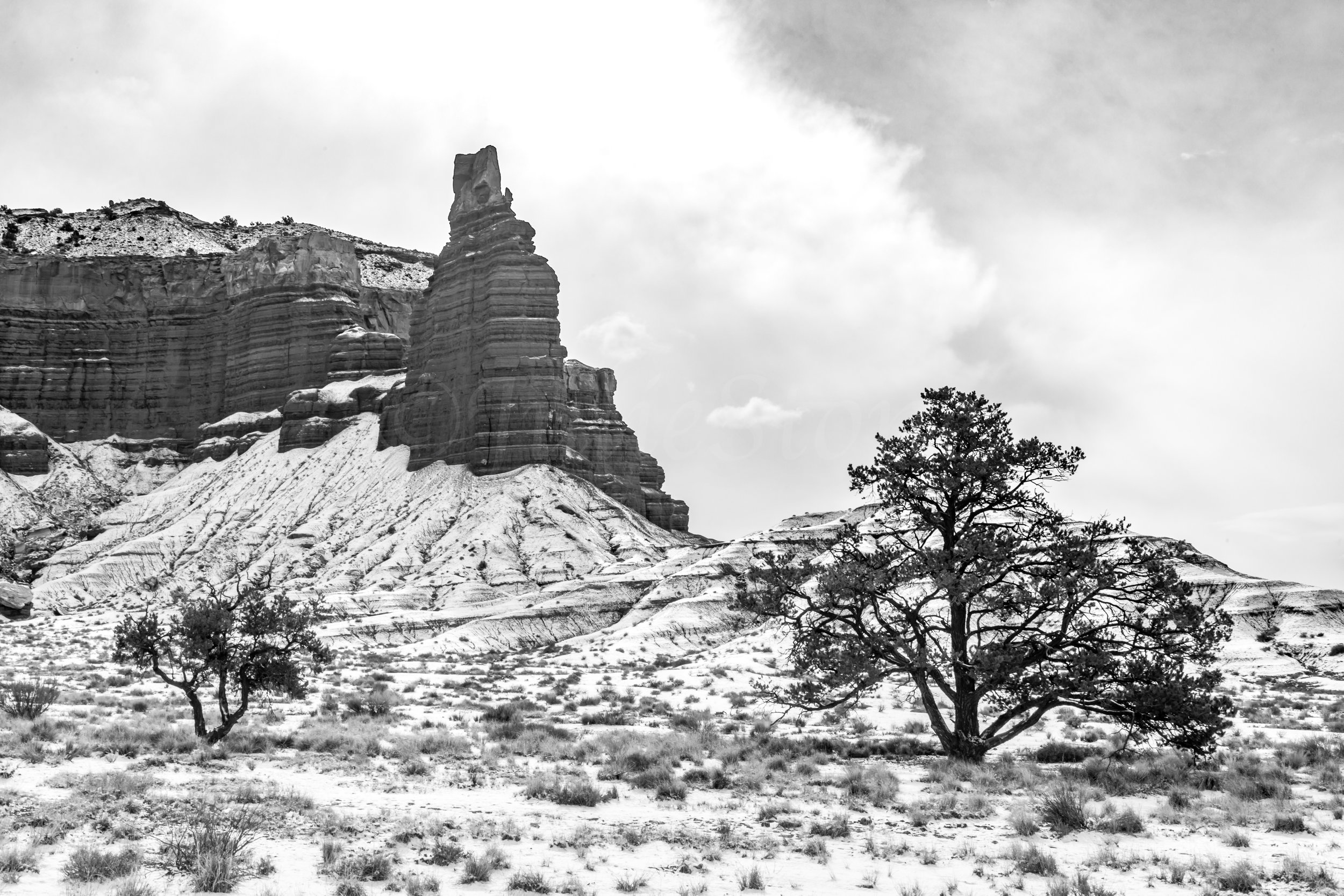 Capitol Reef National Park, Image # 2442