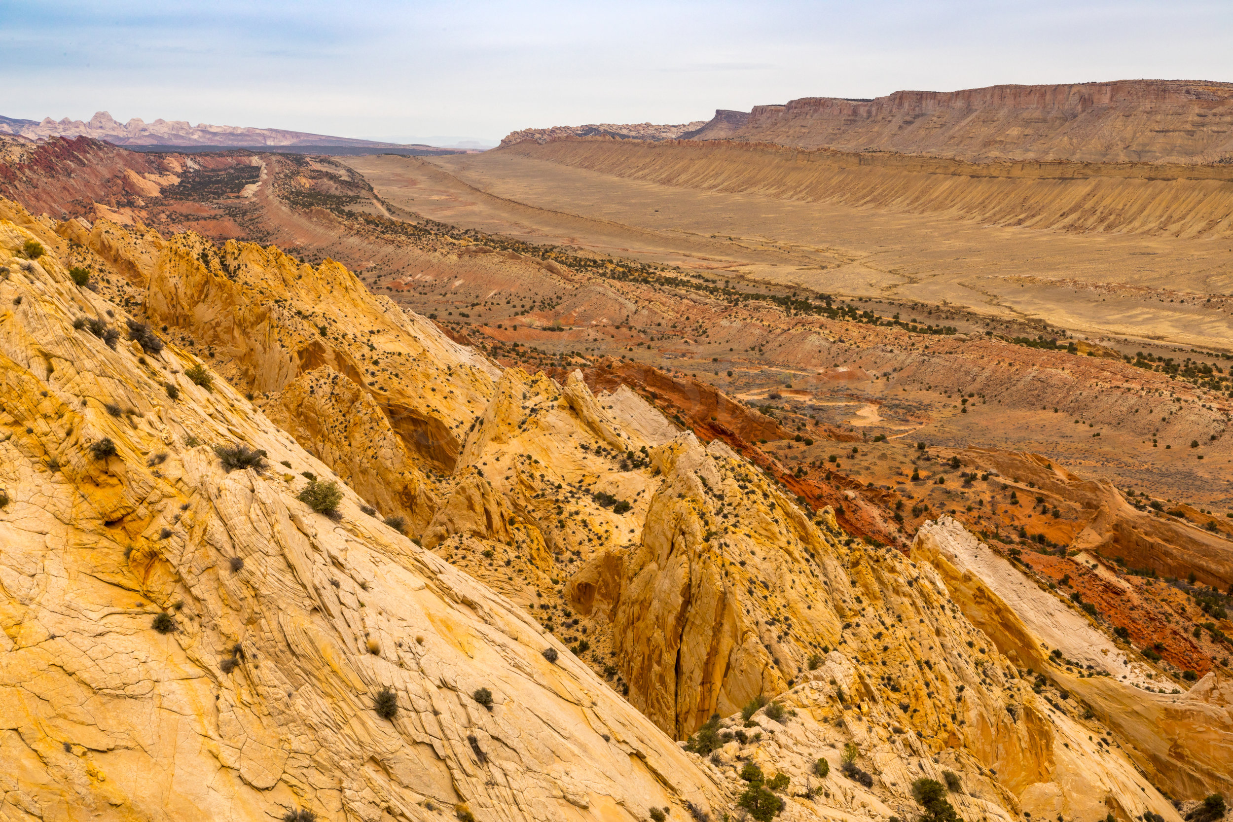 Capitol Reef National Park, Image # 4618