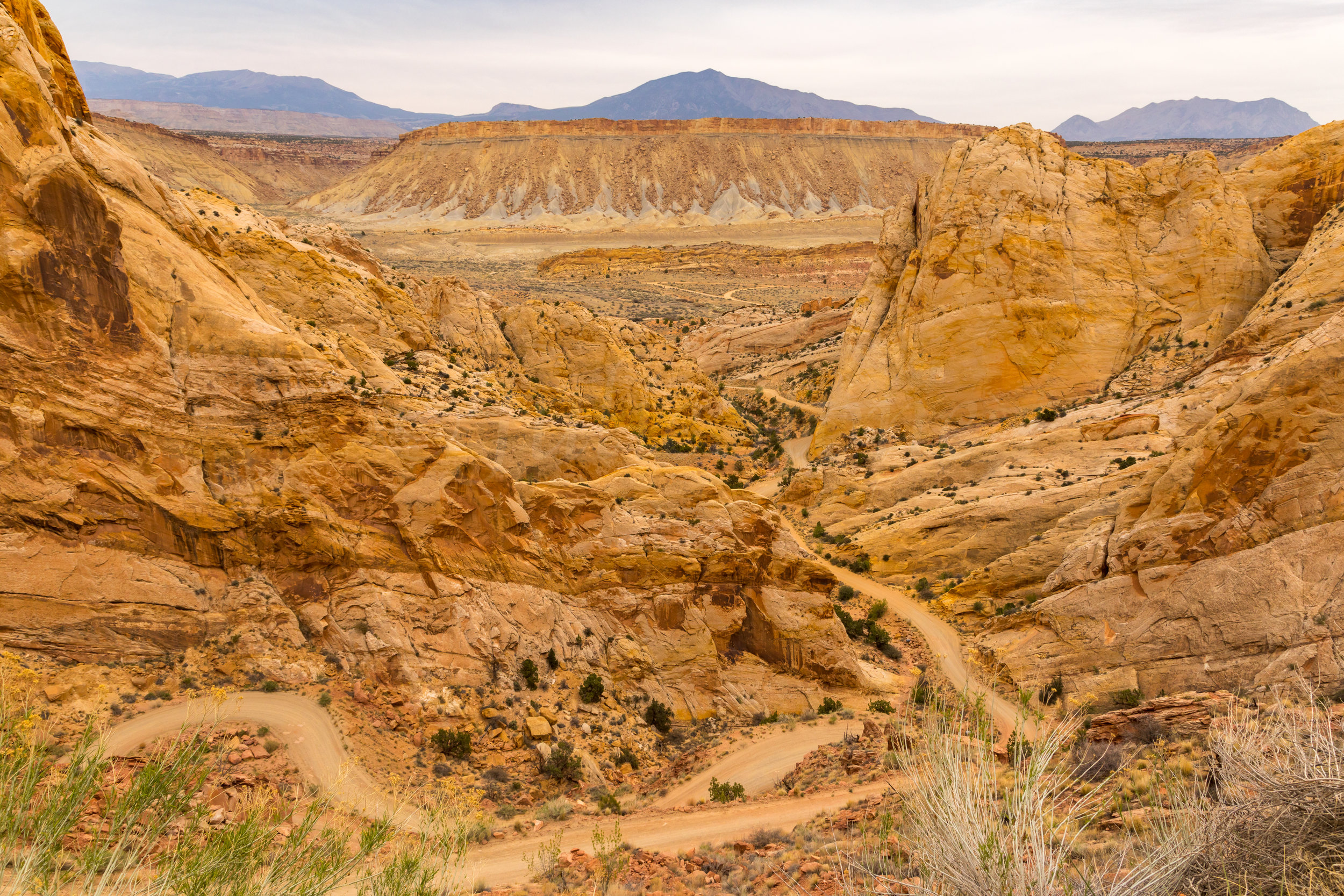 Capitol Reef National Park, Image # 4722