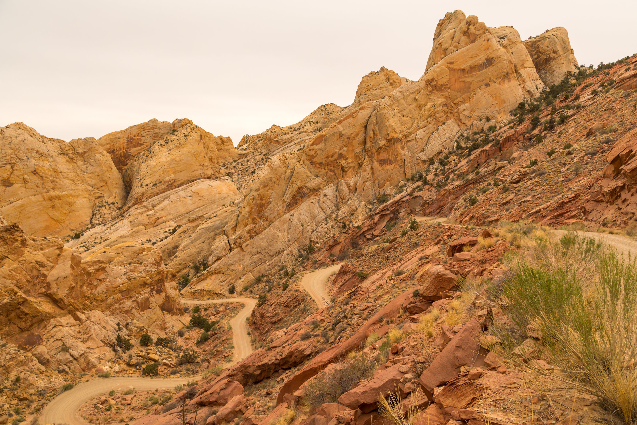 Capitol Reef National Park, Image # 4724