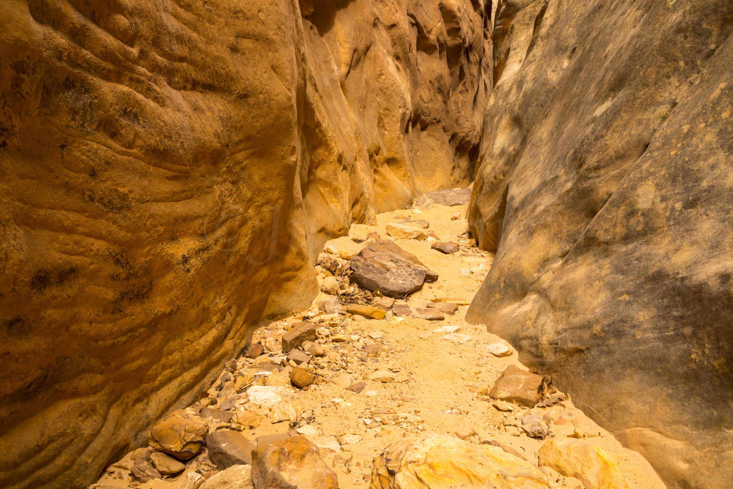 Capitol Reef National Park, Image # 4796