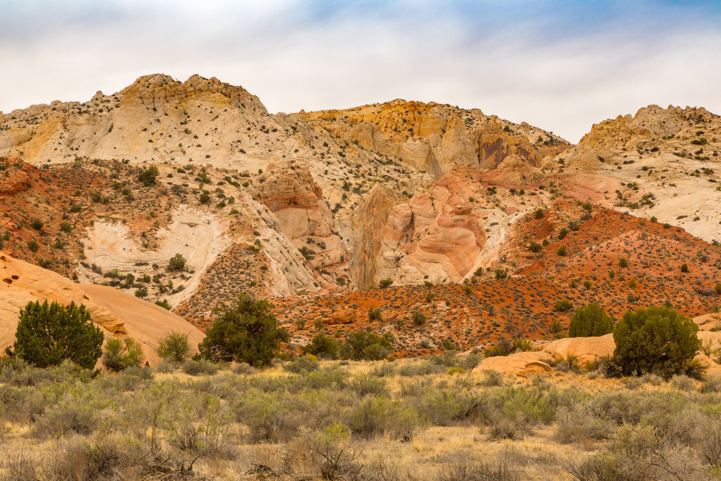 Capitol Reef National Park, Image # 4865