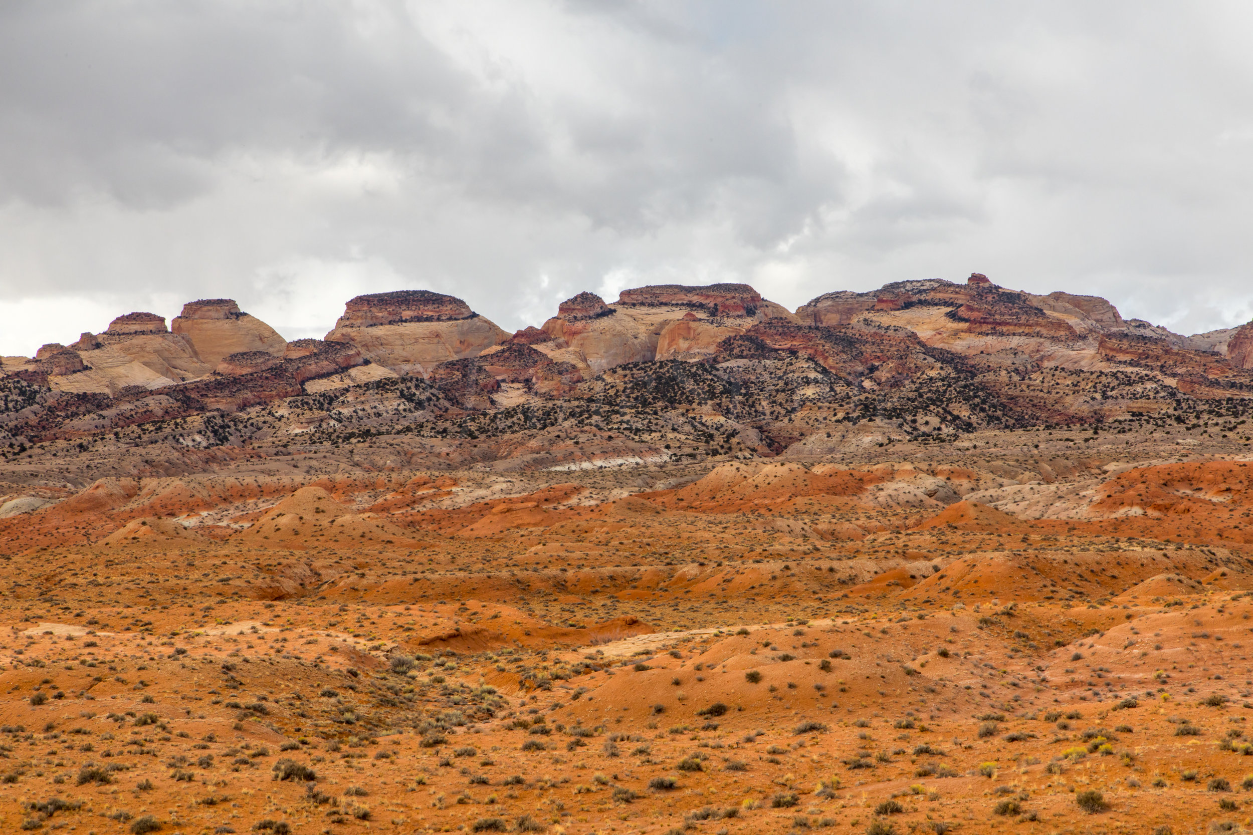 Capitol Reef National Park, Image # 9534
