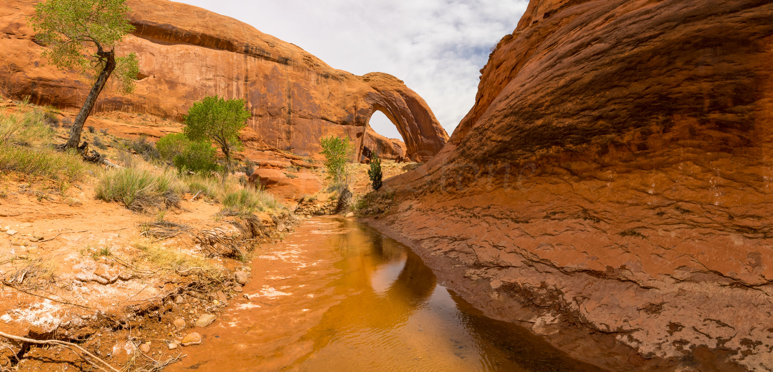 Bow Arch, Image # 2395